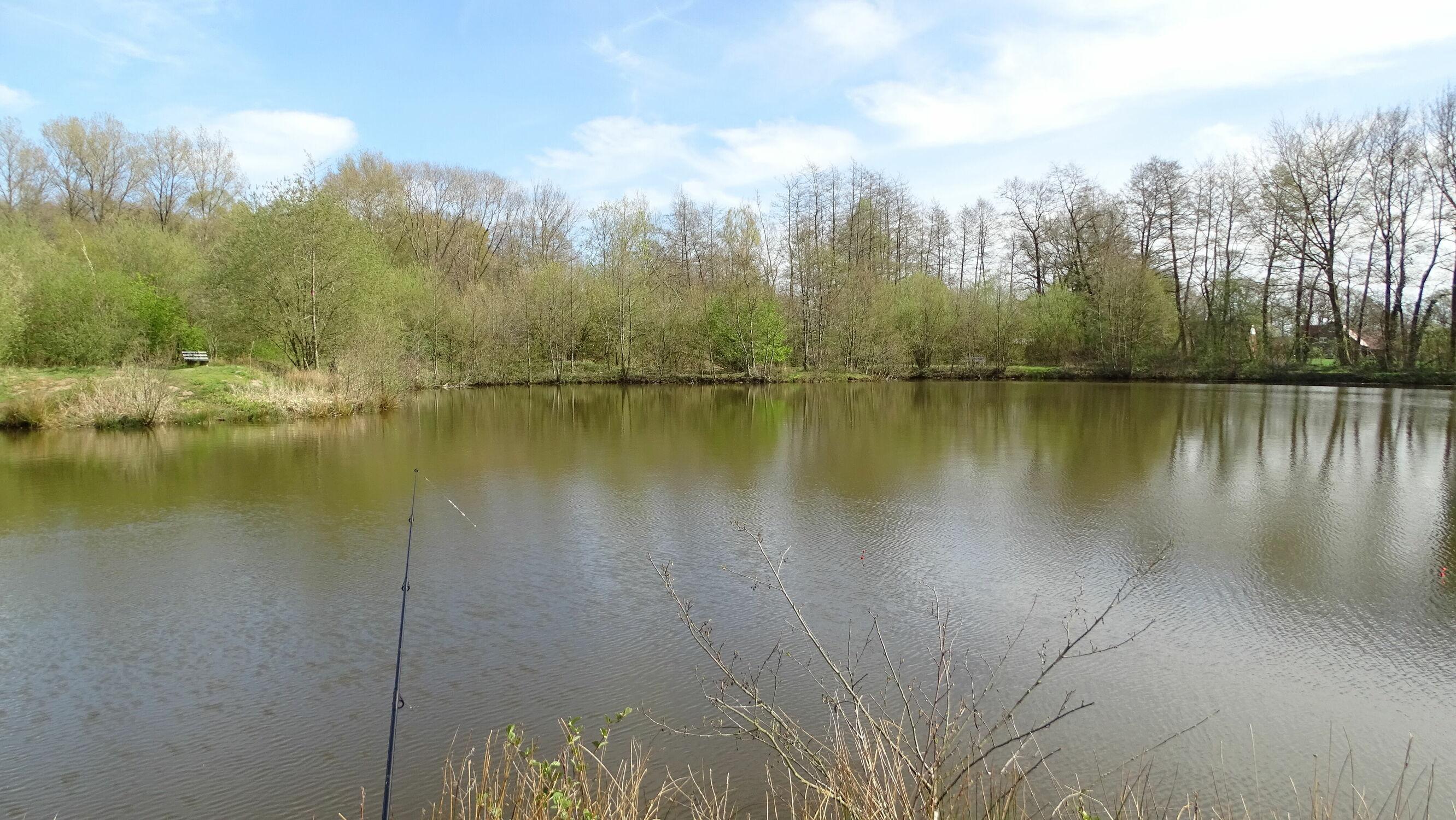 Bild mit Gräser, Bäume, Seen