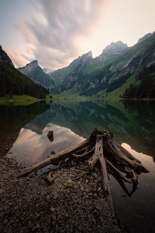 Bild mit Natur, Berge, Seen, Alpen, Baumstamm, Landschaft, Bergsee, Bergsee, schweizer alpen, Seealpsee