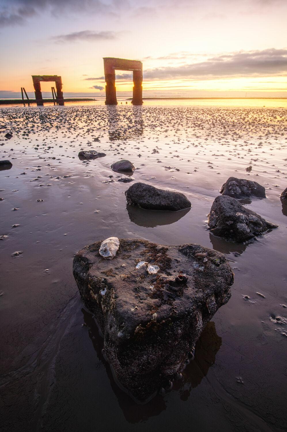 Bild mit Himmel, Meere, Stein, Landschaft, Nordsee, Muschel, Küste, Wattenmeer, Gezeiten, Niedersachsen