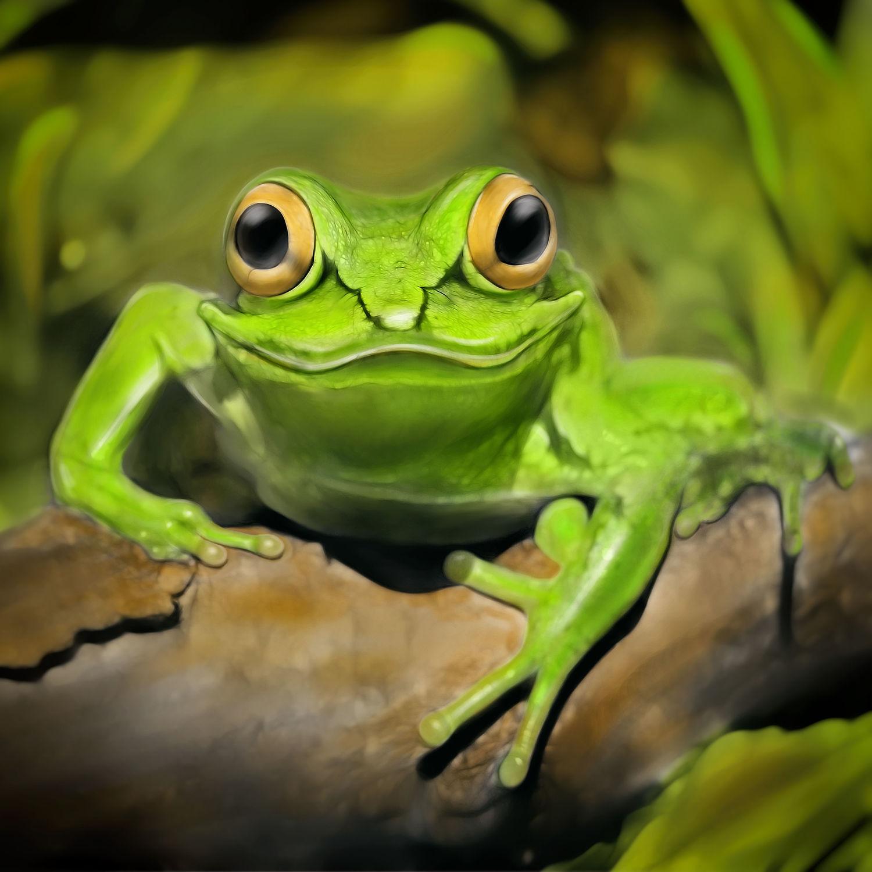 Bild mit Grün, Kinderbilder, Kinderzimmer, Kunst fürs Kinderzimmer, Laubfrosch, Frosch