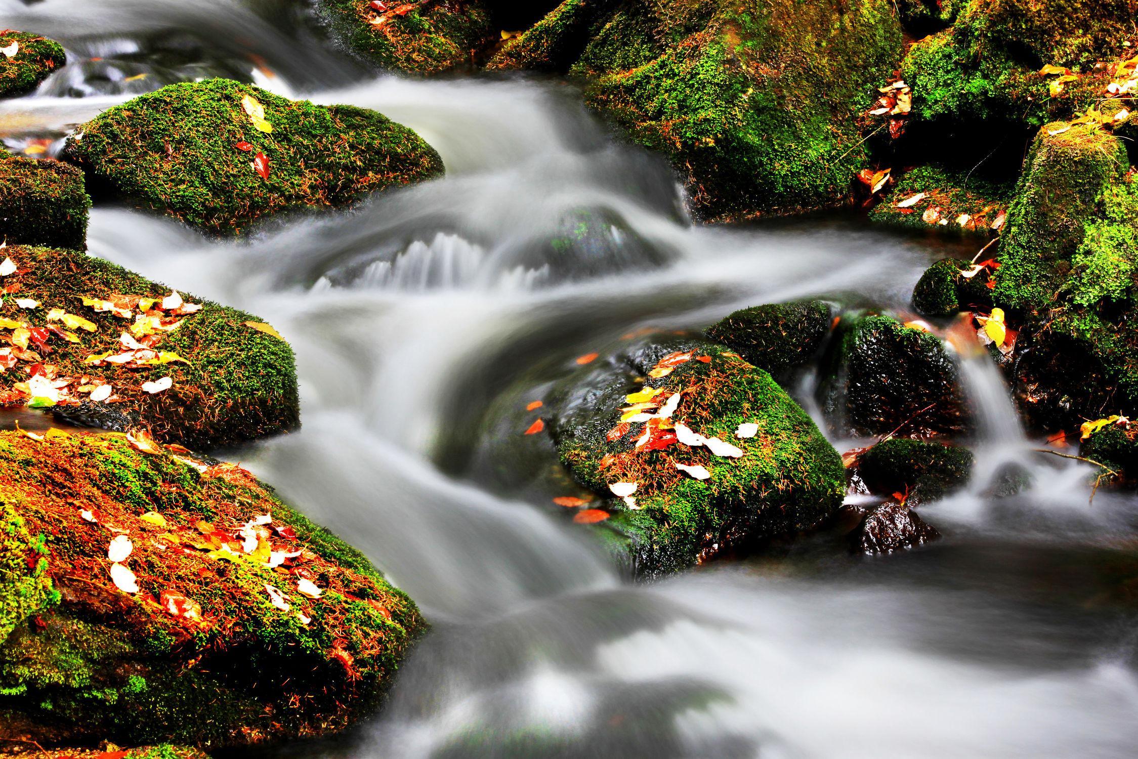 Bild mit Wasser, Wälder, Wasserfälle, Wald, Bach, Waldbach, Wasserfall, Bach im Wald