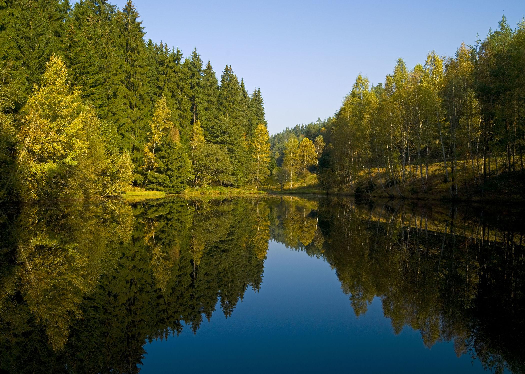 Bild mit Natur, Wasser, Landschaften, Gewässer, Wälder, Seen, Sonne, Wald, Landschaft, See, Seelandschaft, Spiegelung