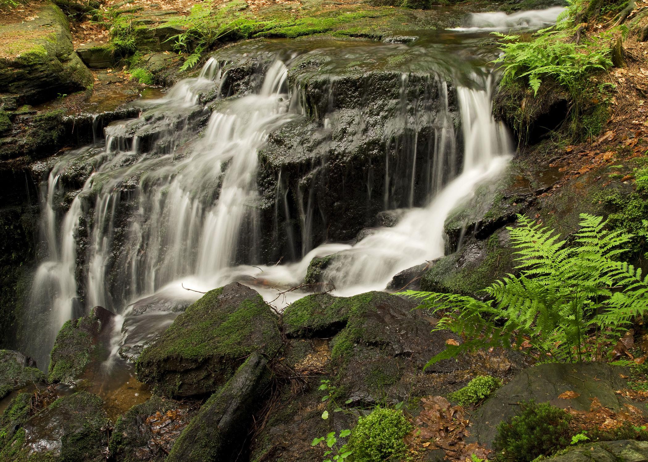 Bild mit Natur, Landschaften, Wälder, Wasserfälle, Wald, Landschaft, Bach, Wasserfall, Bäche