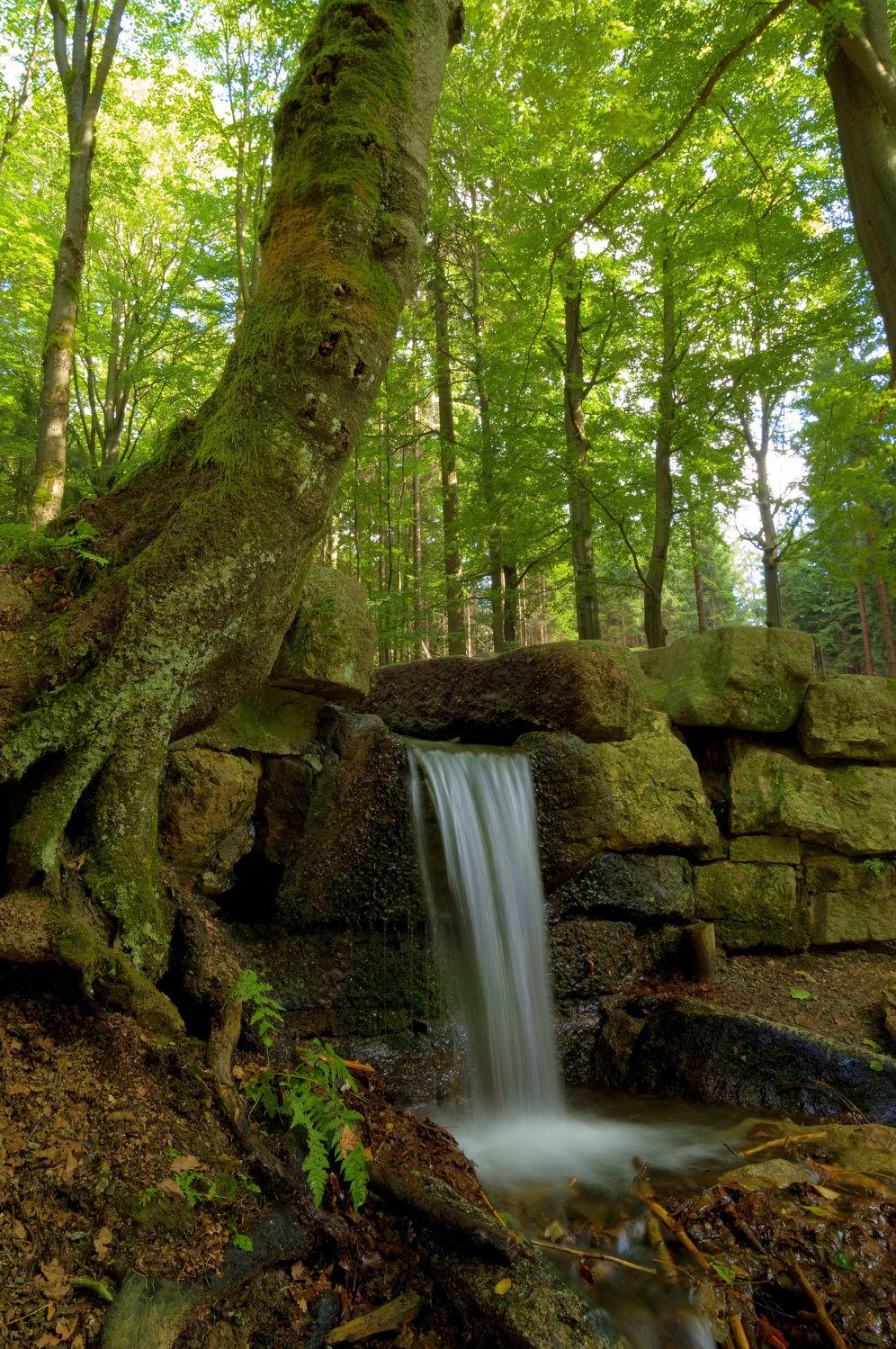 Bild mit Natur, Wasser, Landschaften, Herbst, Wald, Landschaft, Natur und Landschaft, Gebirge