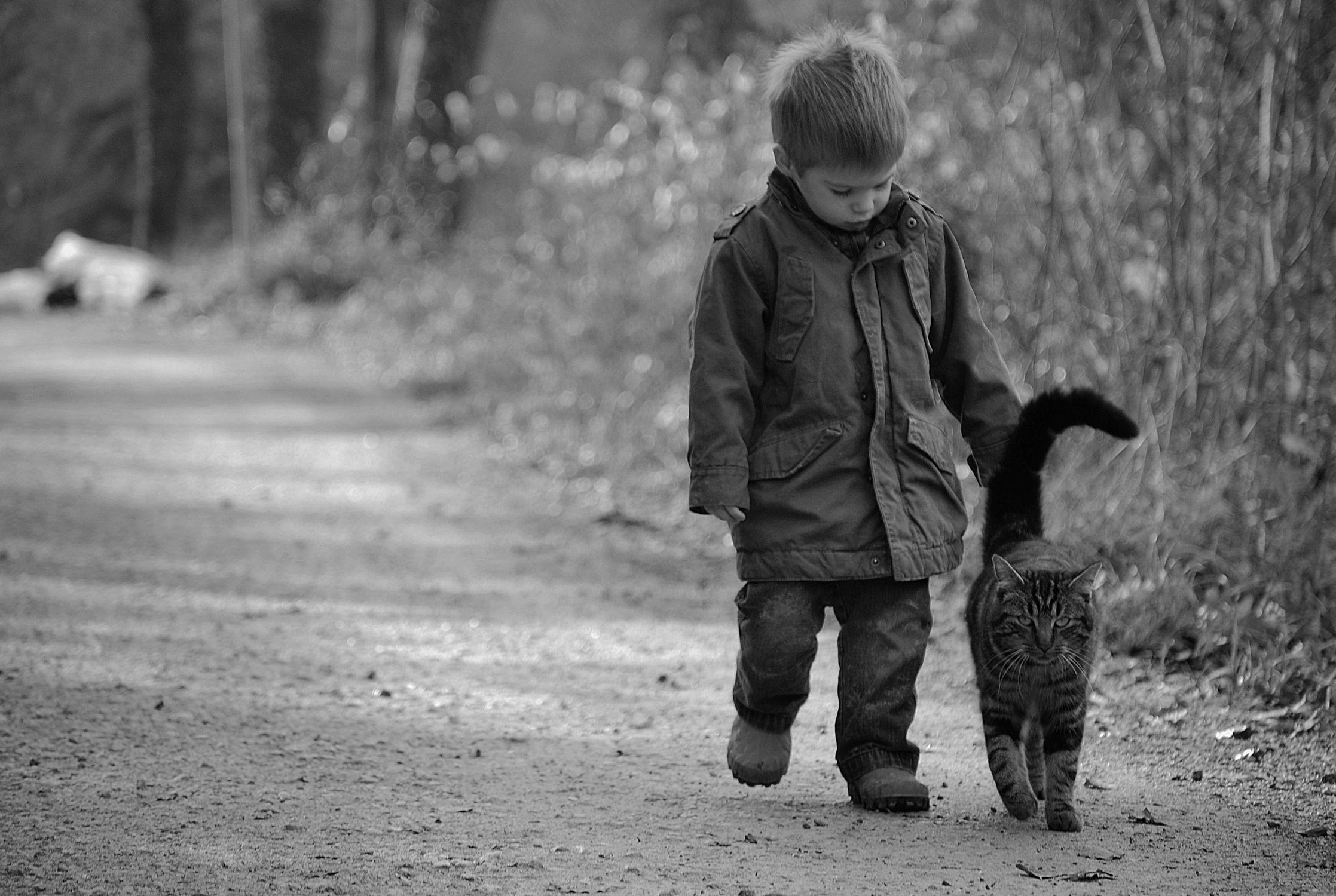 Bild mit Gehwege, Weg, Kinderzimmer, Kinder, Kind, Katze, Katze, Katzenbilder, child, schwarz weiß, kid