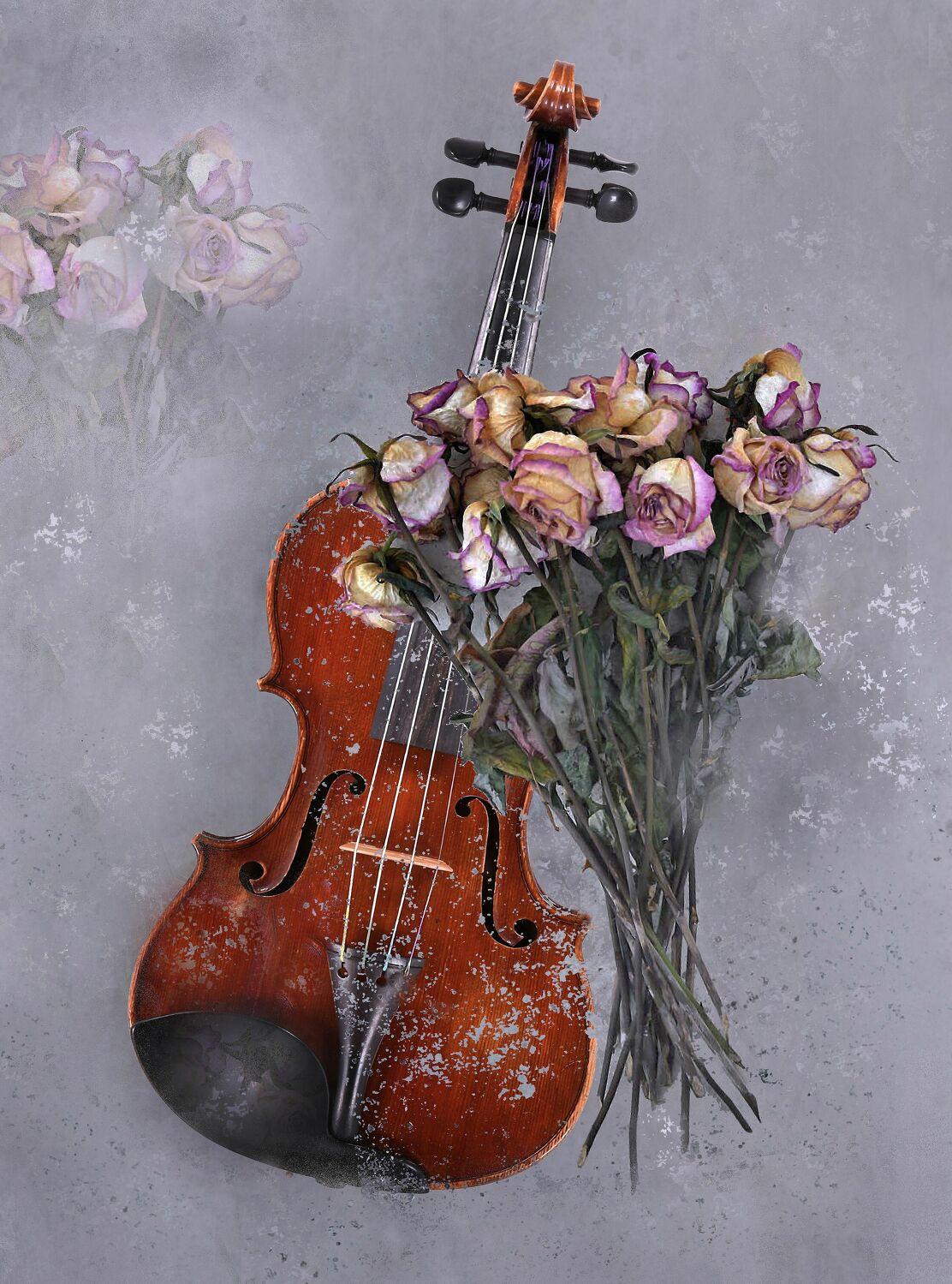 Bild mit Blumen, Rosen, Musikinstrument, Rose, romantik, Blüten, Textur, Musik, romantisch, geige