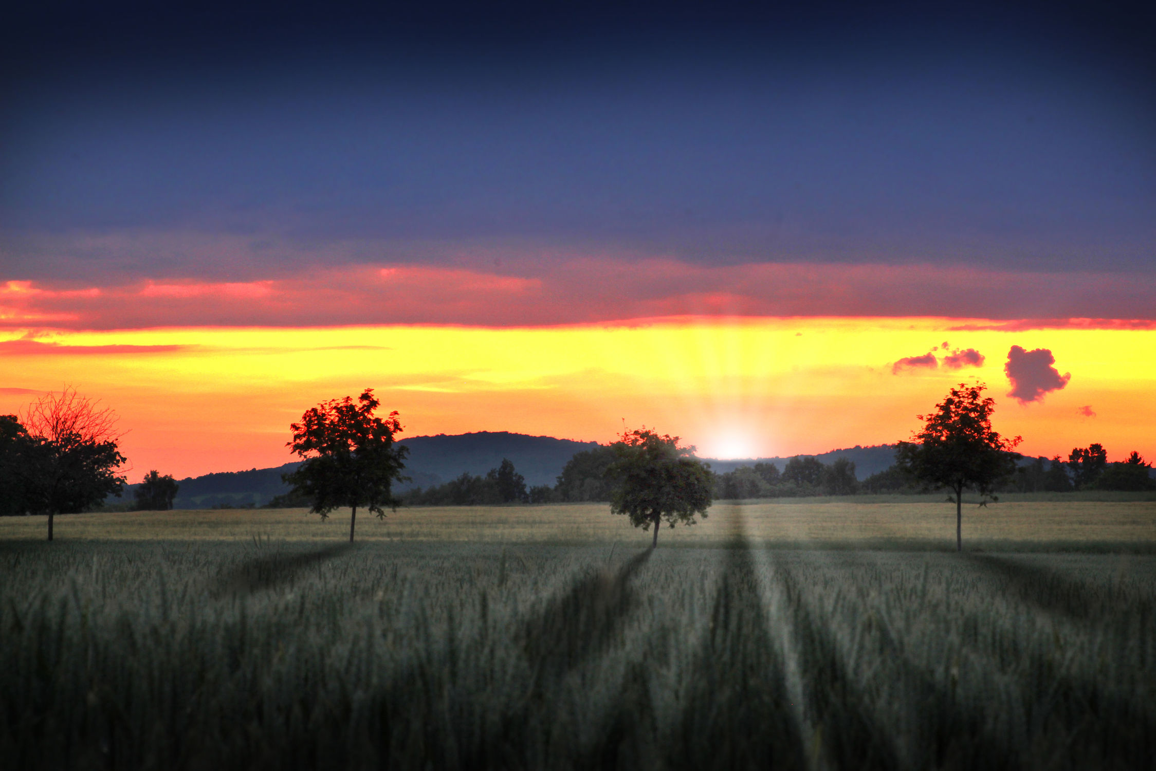 Bild mit Natur, Sonnenuntergang, Sonnenaufgang, Landschaft, Feld, mystisch, Schatten