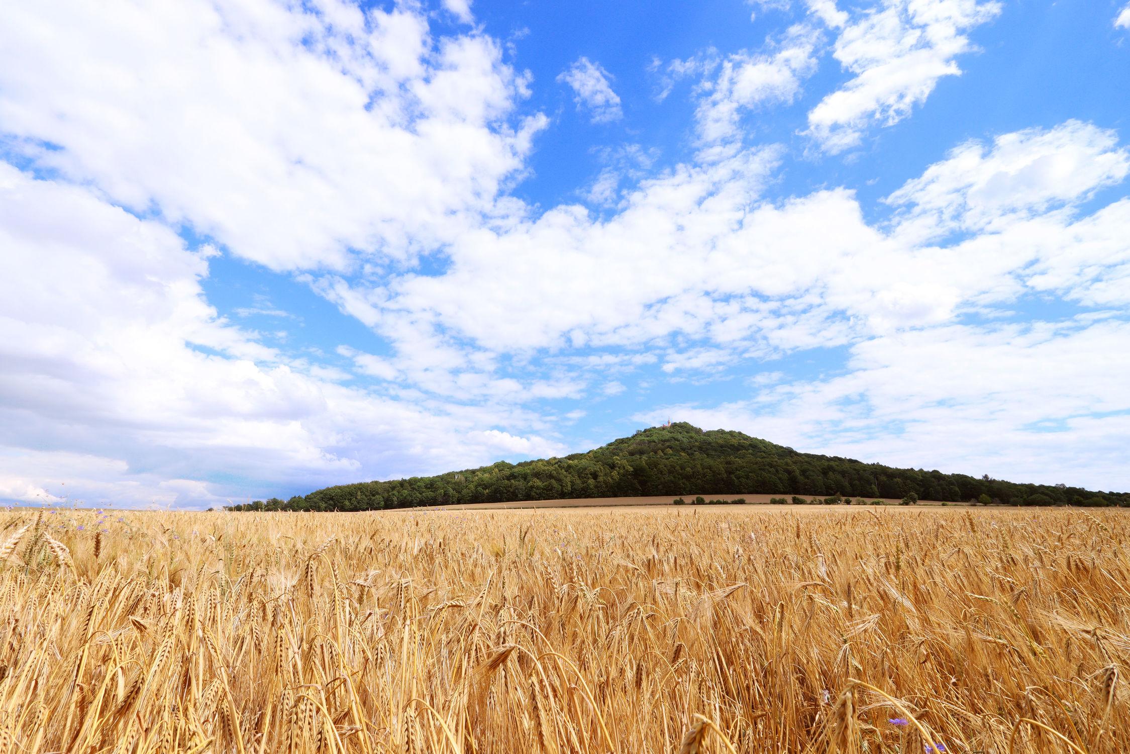 Bild mit Natur, Wolken, Wolkenhimmel, Landschaft, Görlitz, Feld, Landeskrone, Hausberg, Oberlausitz, Landschaftspanorama