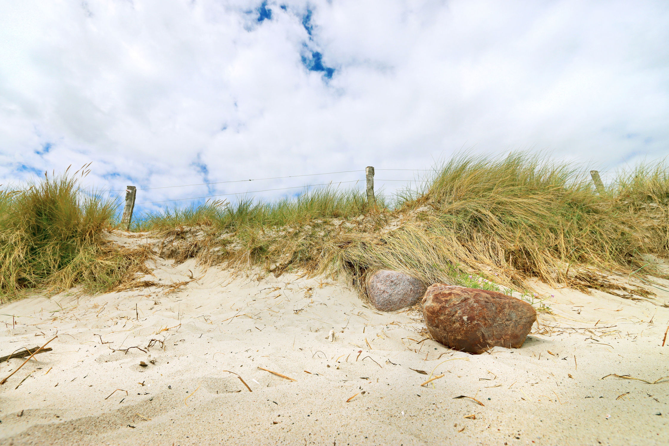 Bild mit Sand, Strand, Sandstrand, Ostsee, Grömitz, Meer, Düne, Dünen, Gras, Dünengras, Nordsee, Am Meer, Strandhafer, Strandgras, Schleswig, Holstein, Ostholstein, Strandgräser