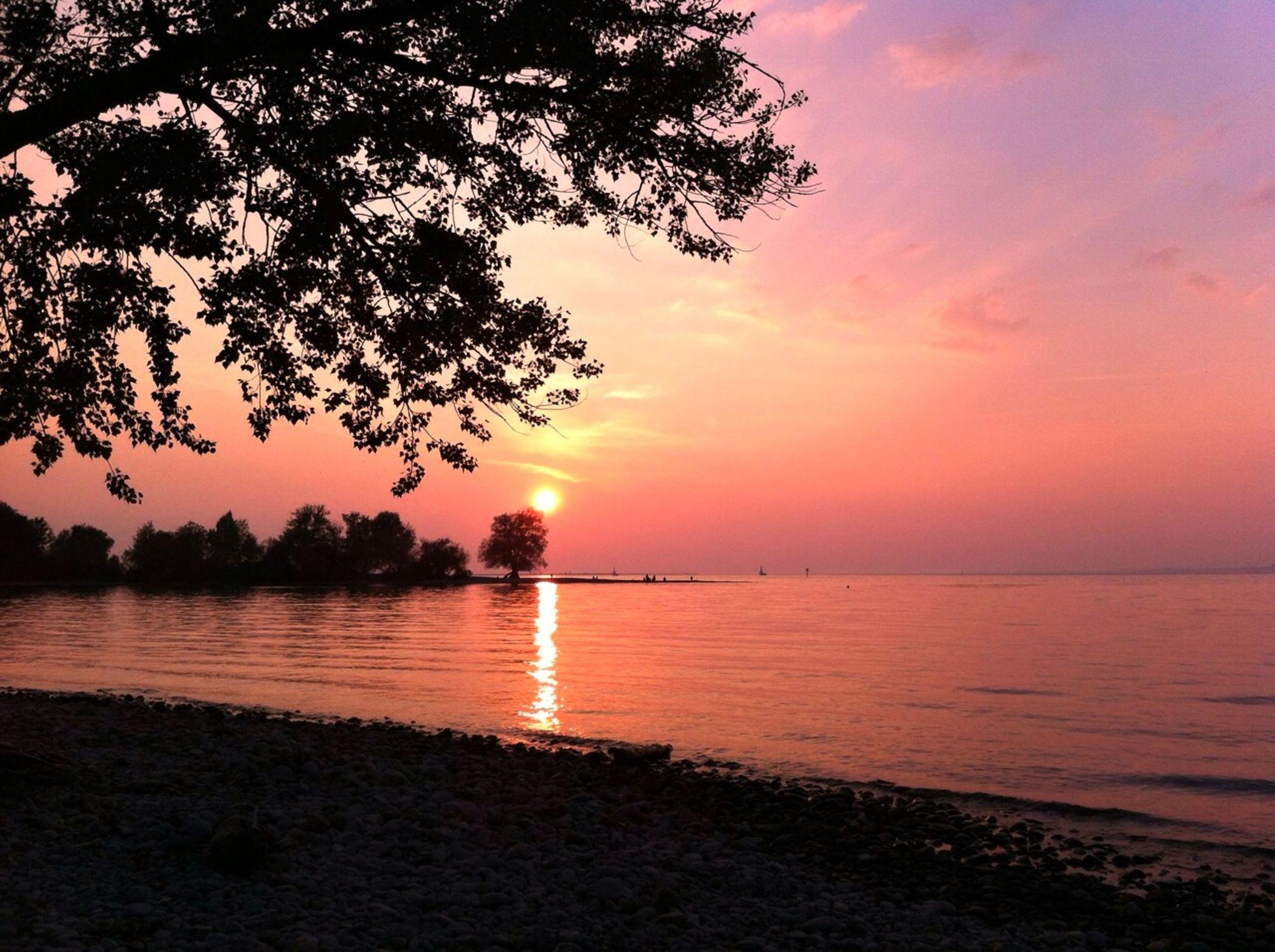 Bild mit Natur, Wasser, Wasser, Himmel, Seen, Rosa, Sonnenuntergang, Deutschland, Sonnenaufgang, Sonne, Österreich, romantik, See, See, Bodensee, Landschaft und Natur, pink, Abendstimmung, Schweiz