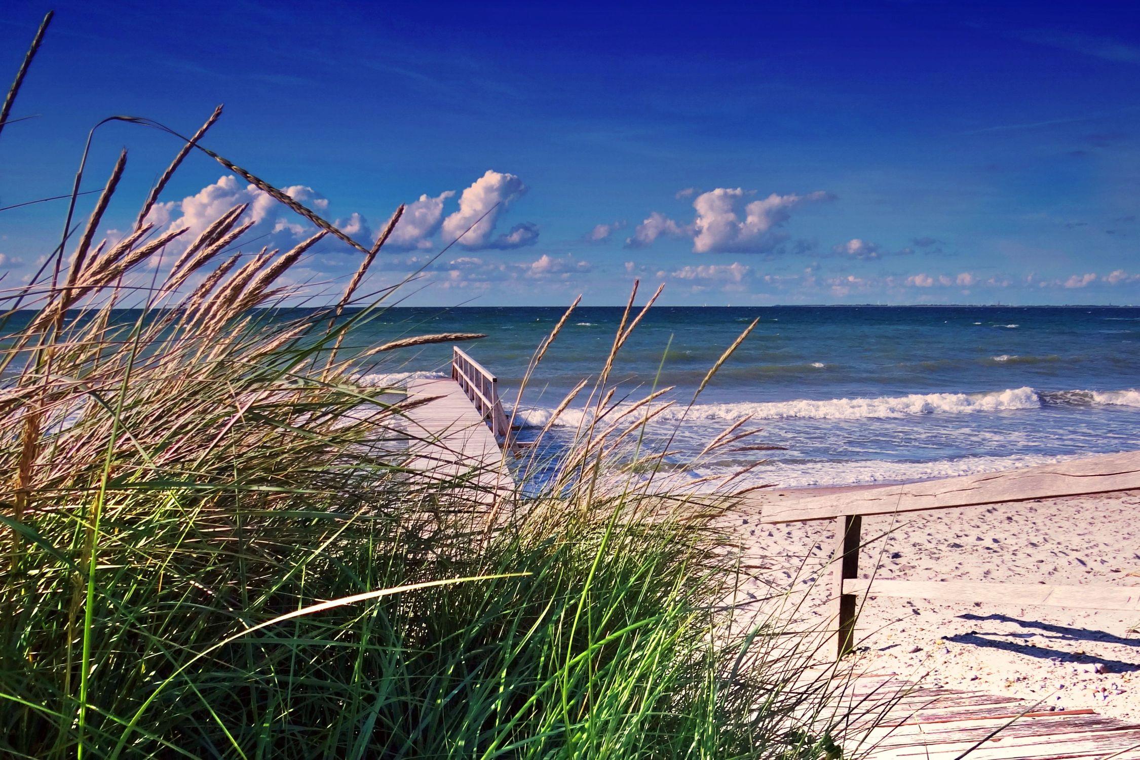 Bild mit Strände, Strand, Sandstrand, Ostsee, Düne, Dünen, Dünengras, Strandhafer