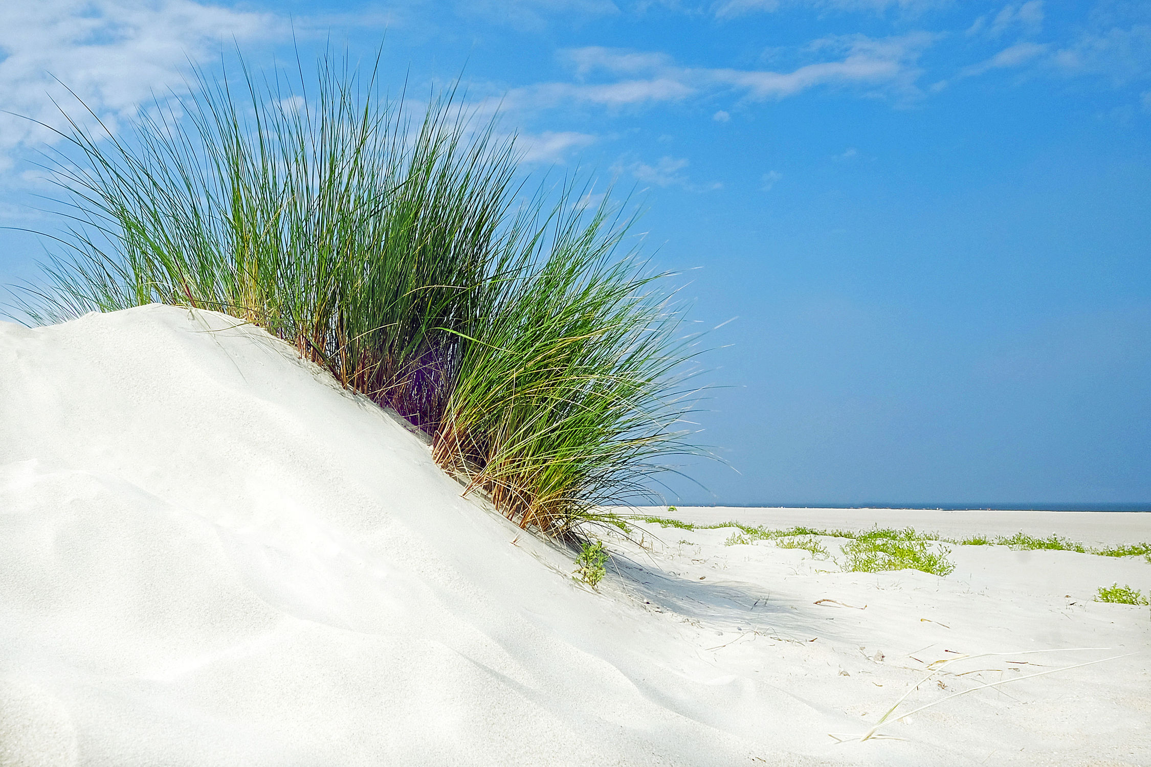 Bild mit Sonne, Strand, Meerblick, Meer, Dünen, Dünengras, Küste, Ostfriesland, Sanddünen, Norderney, Feiner_Sand, Ostfriesische_ Inseln, Windstille