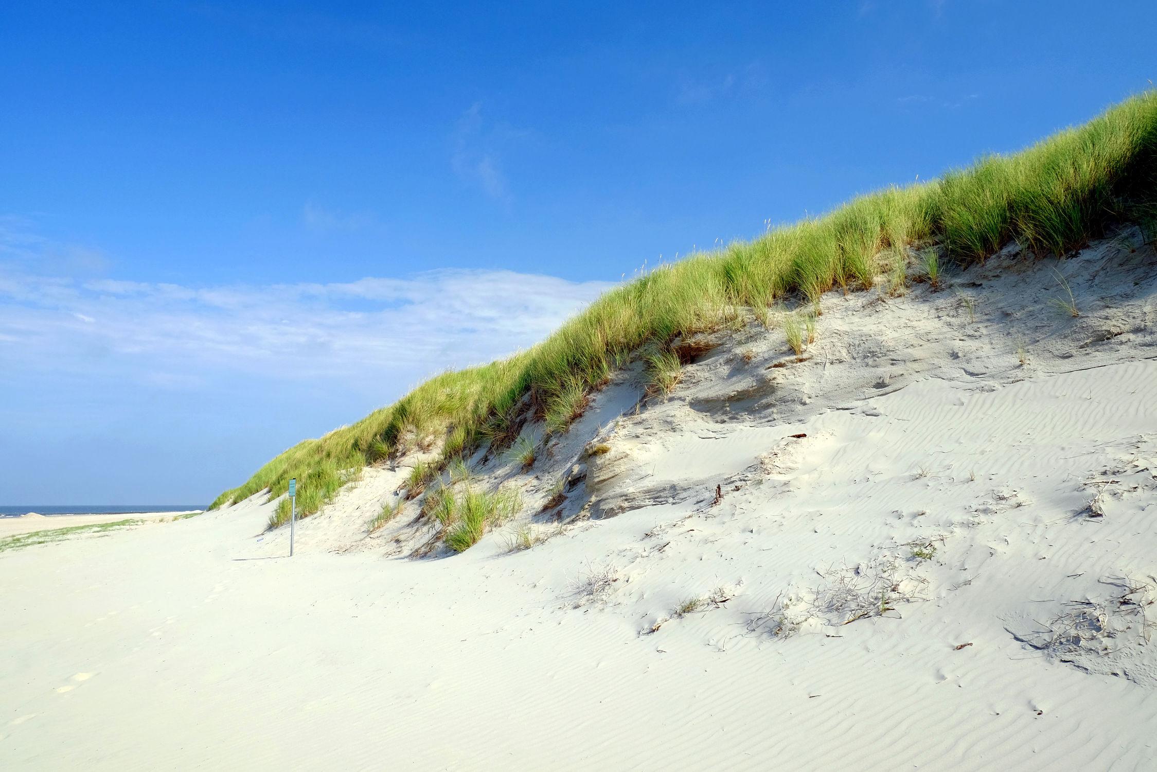 Bild mit Strände, Nordsee, Strand / Meer, Ostfriesland, Naturschutzgebiet, Norderney, Inselschutz, Ostfriesische_ Inseln, Schutzdünen, Badestrandende, Naturkatastophen