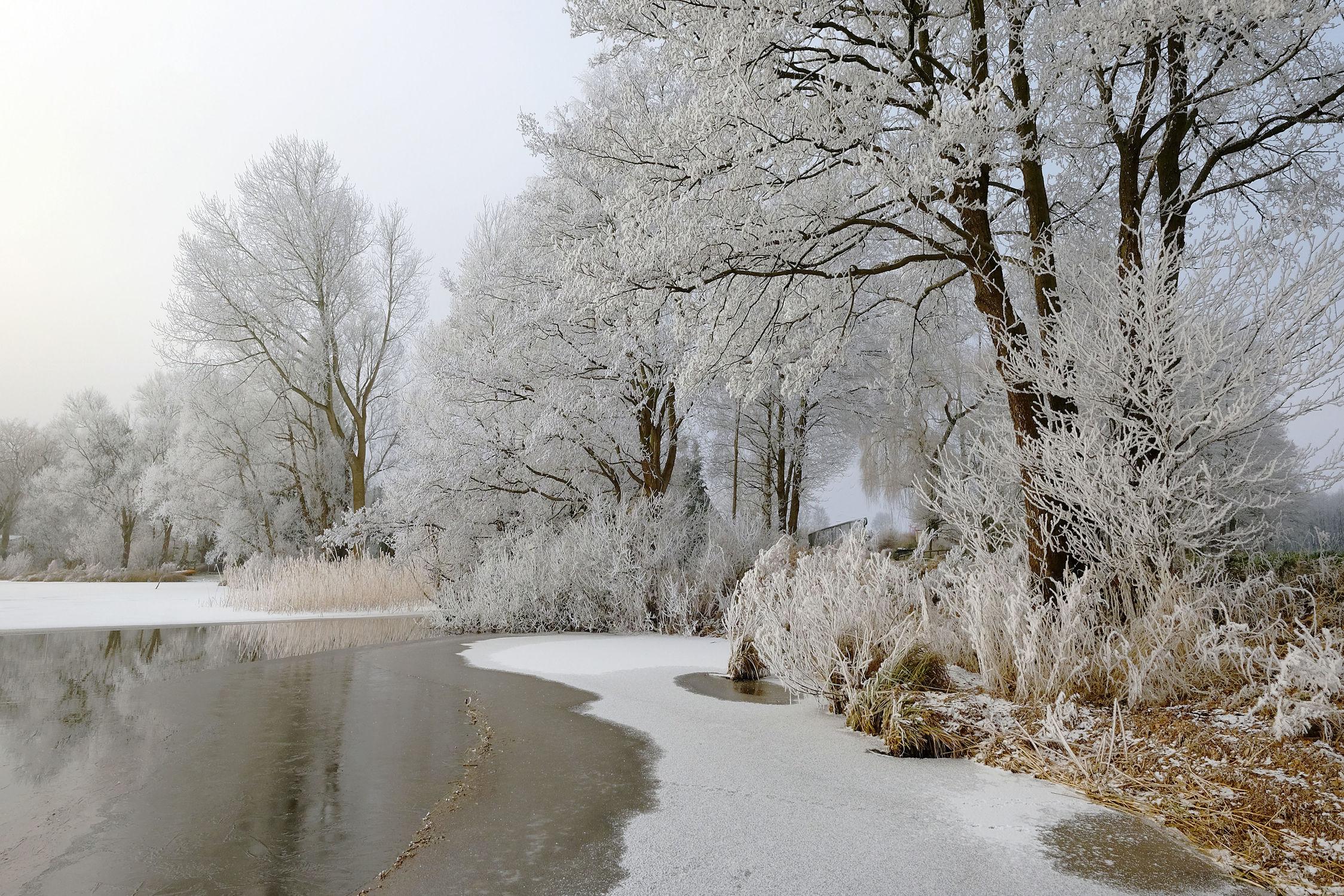 Bild mit Schnee, Eis, Gewässer, Seen, Sonne, Winterzeit, Sonnenlicht, Ufer, Raureif