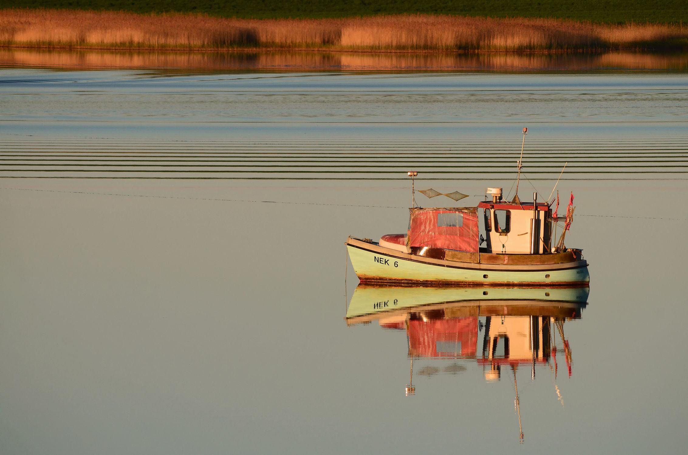 Bild mit Sonnenuntergang, Sport, Schilf, Meerblick, boot, Meer, Ausspannen, Abendstille, Bodden, reet, Rügen, Angler, Ufer, Röhrricht, Wasserwellen