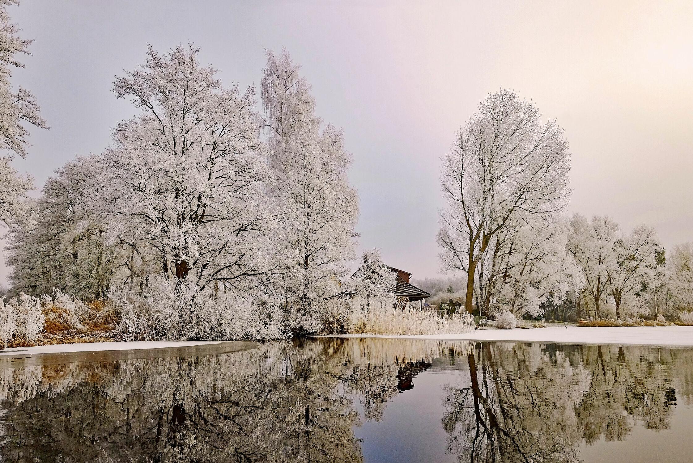 Bild mit Wasser, Himmel, Bäume, Bäume, Sonnenuntergang, Nebel, Spiegelungen, WOHNEN, Kälte, reet, Abendstimmung, Ufer, Raureif, Brahm_See