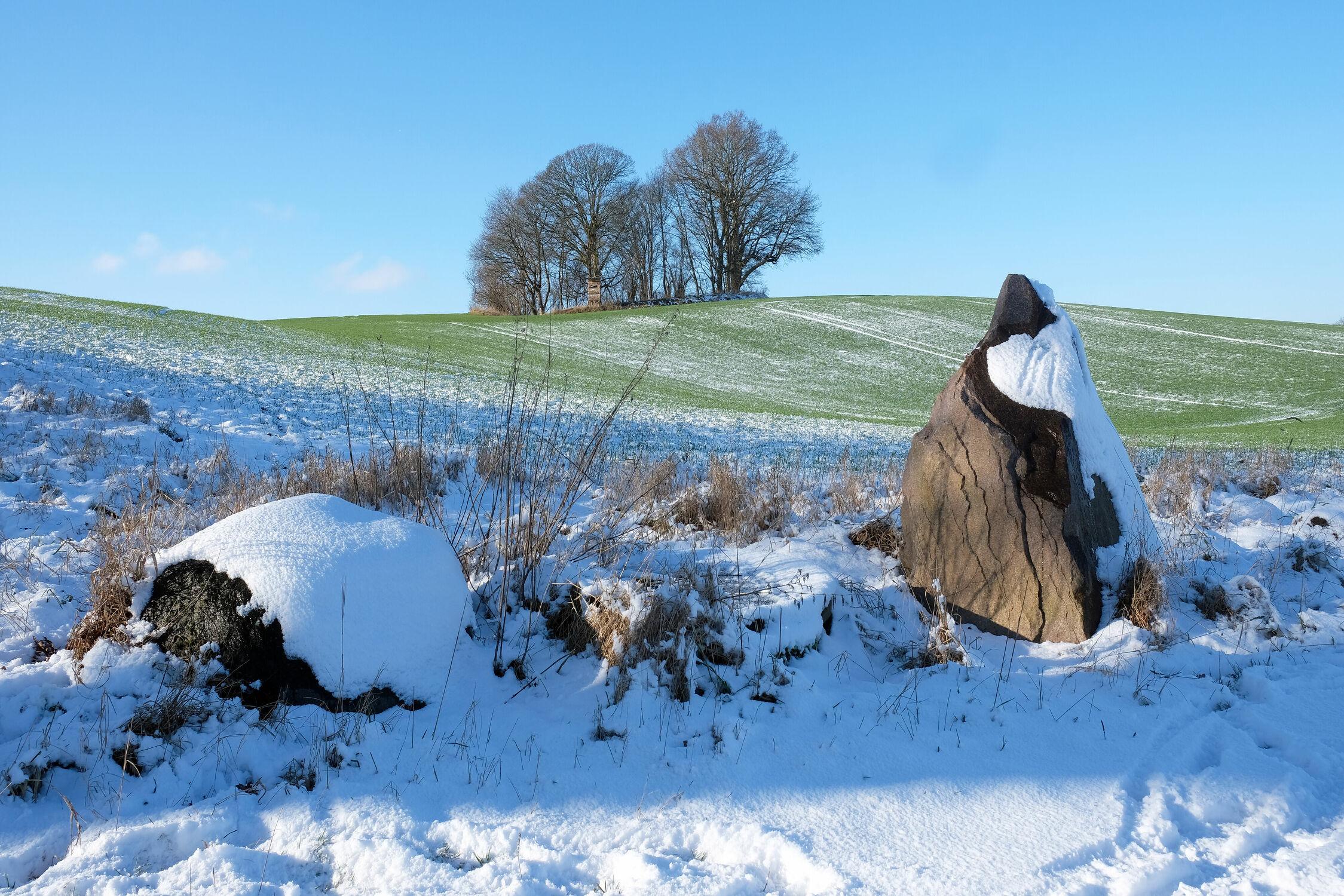 Bild mit Gräser, Himmel, Winter, Schnee, Blau, Wege, Felder, Wiesen, Schleswig_Holstein, Anhöhe, Eckpunkte, Merkmale, Eckstein, Areal, Gutshof, Naturparks