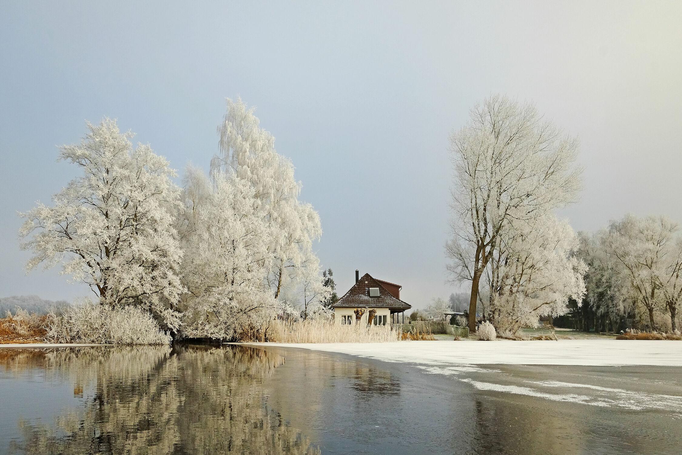 Bild mit Wasser, Bäume, Winter, Schnee, Eis, Gewässer, Seen, Urlaub, Reisen, Spiegelungen, Ausspannen, Raureif, Schleswig, Holstein