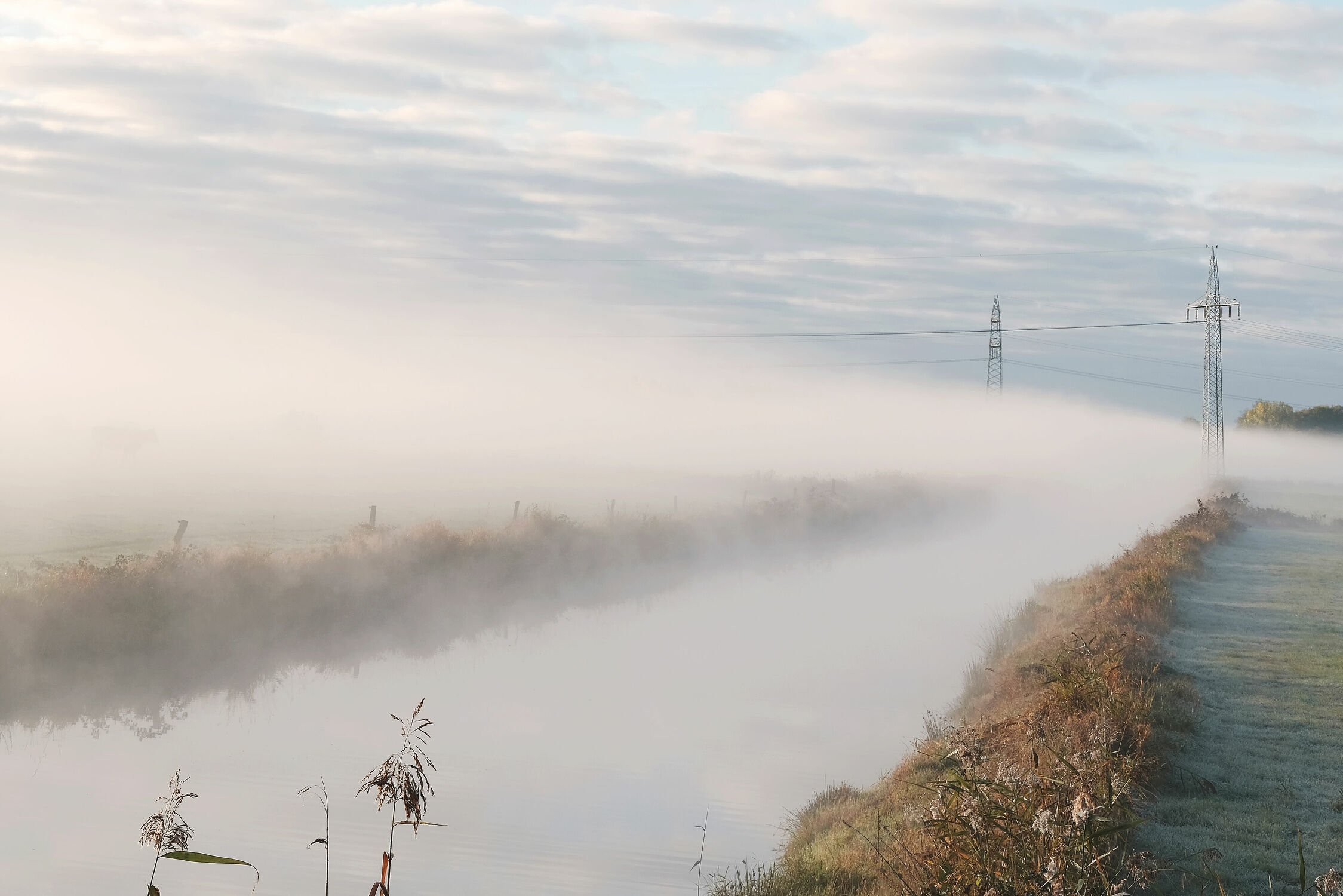 Bild mit Gräser, Gewässer, Kanäle, Vögel, Energie, Ufer, Masten, Nebelfelder, frühem_ Morgen