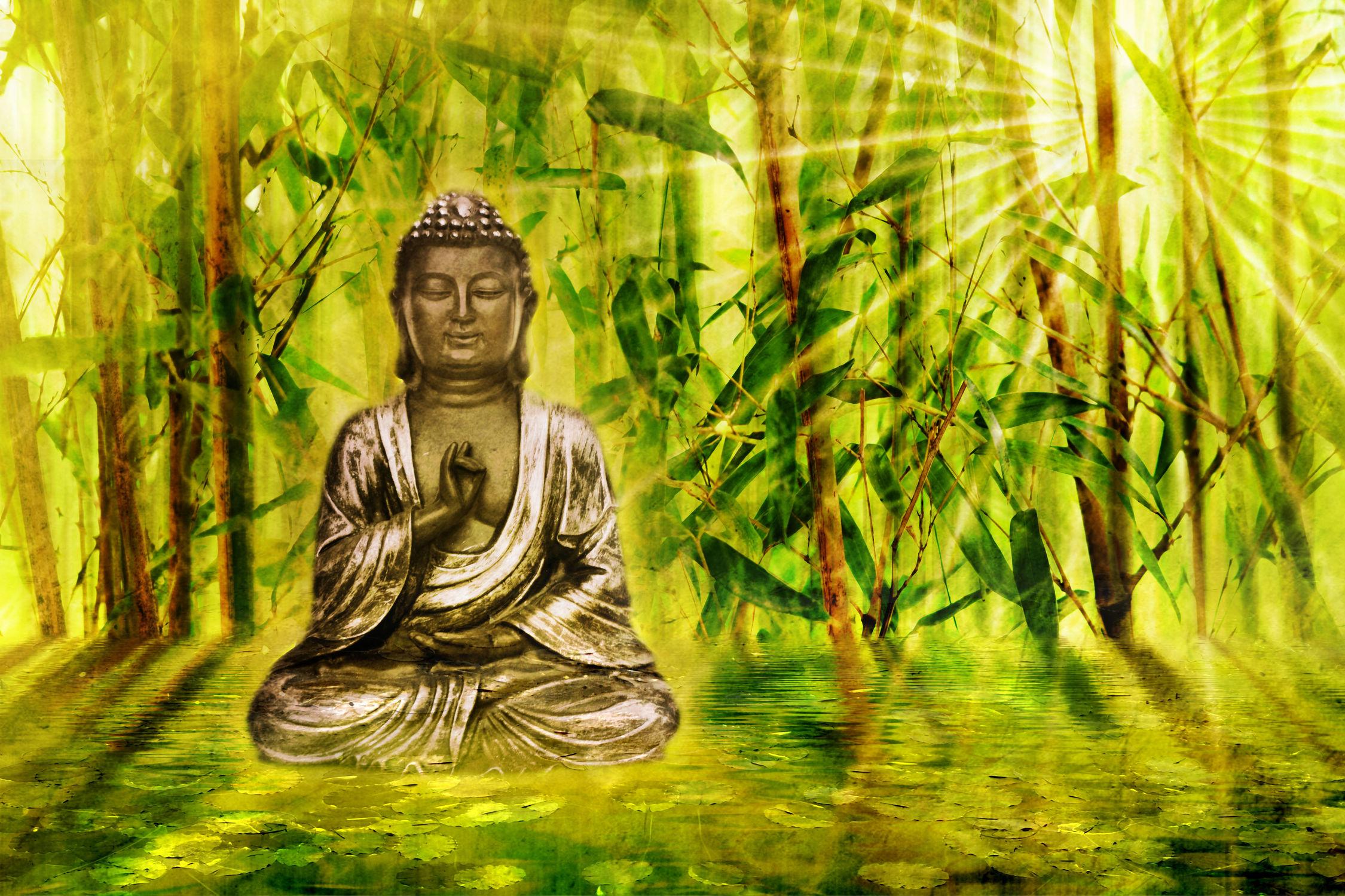 Bild mit Wasser, Frühling, romantik, Meditation, See, Ruhe, seerosen, Buddha, Wellness, Asiatisches, Stille, bambuswald, asien, Buddhismus, Erkenntnis, ERLEUCHTUNG, weisheit, Nirvana, Nirwana, Siddhartha Gautama, Samsara, Beschaulichkeit, malerisch, Unpersönlichkeit