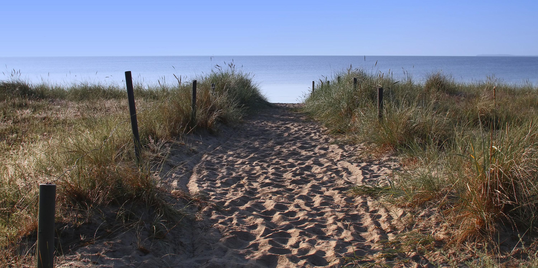 Bild mit Natur, Landschaften, Gewässer, Strand, Sandstrand, Ostsee, Meer, Landschaft, Düne, Dünen, Dünengras, Dünenlandschaft, ozean, Strandhafer
