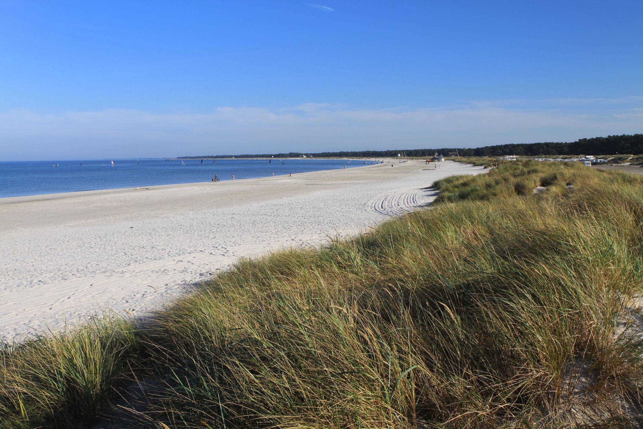 Bild mit Sand, Strand, Sandstrand, Ostsee, Düne, Dünen, See, Am Strand, Strandhafer