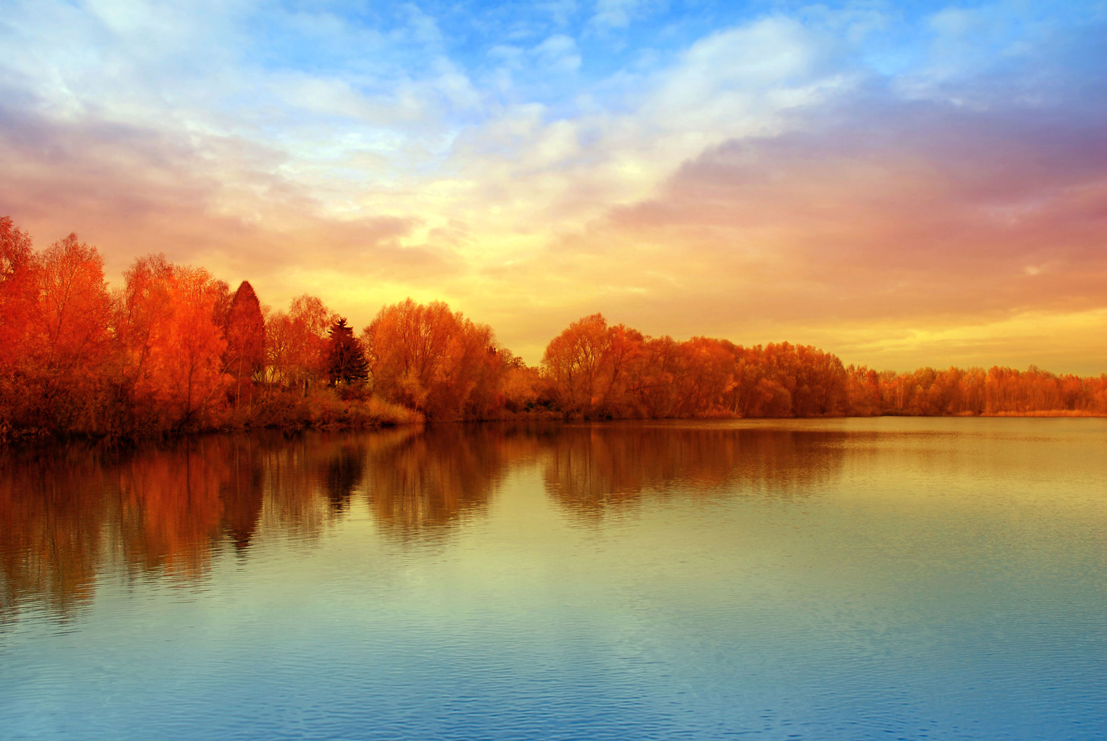 Bild mit Natur, Wasser, Landschaften, Bäume, Gewässer, Herbst, Sonnenuntergang, Sonne, Baum, Berlin, Landschaft, See, spektesee