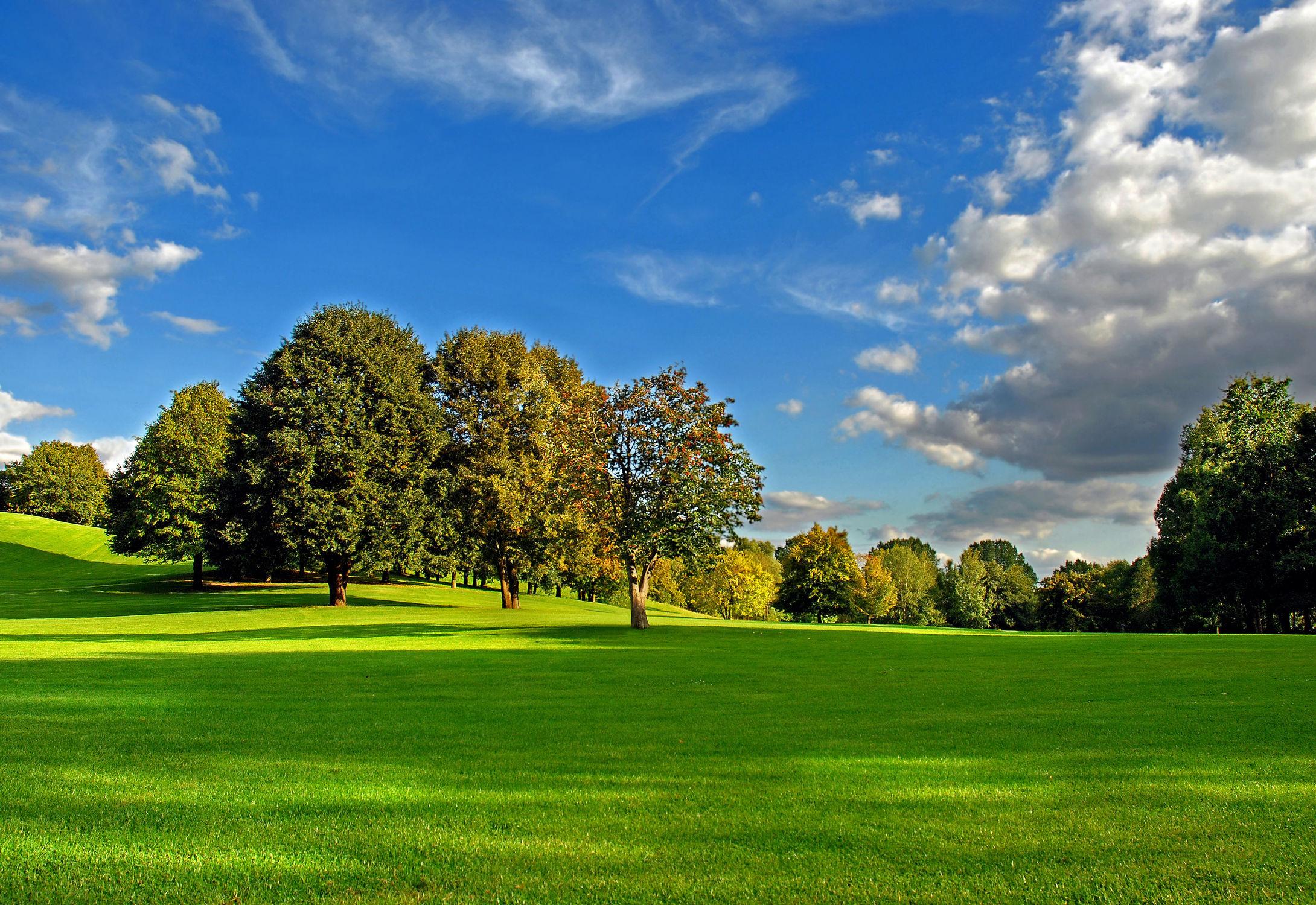 Bild mit Natur, Landschaften, Bäume, Jahreszeiten, Herbst, Sonne, Baum, Berlin, Blätter, Landschaft, Wiese, Park, Bunt, Idylle