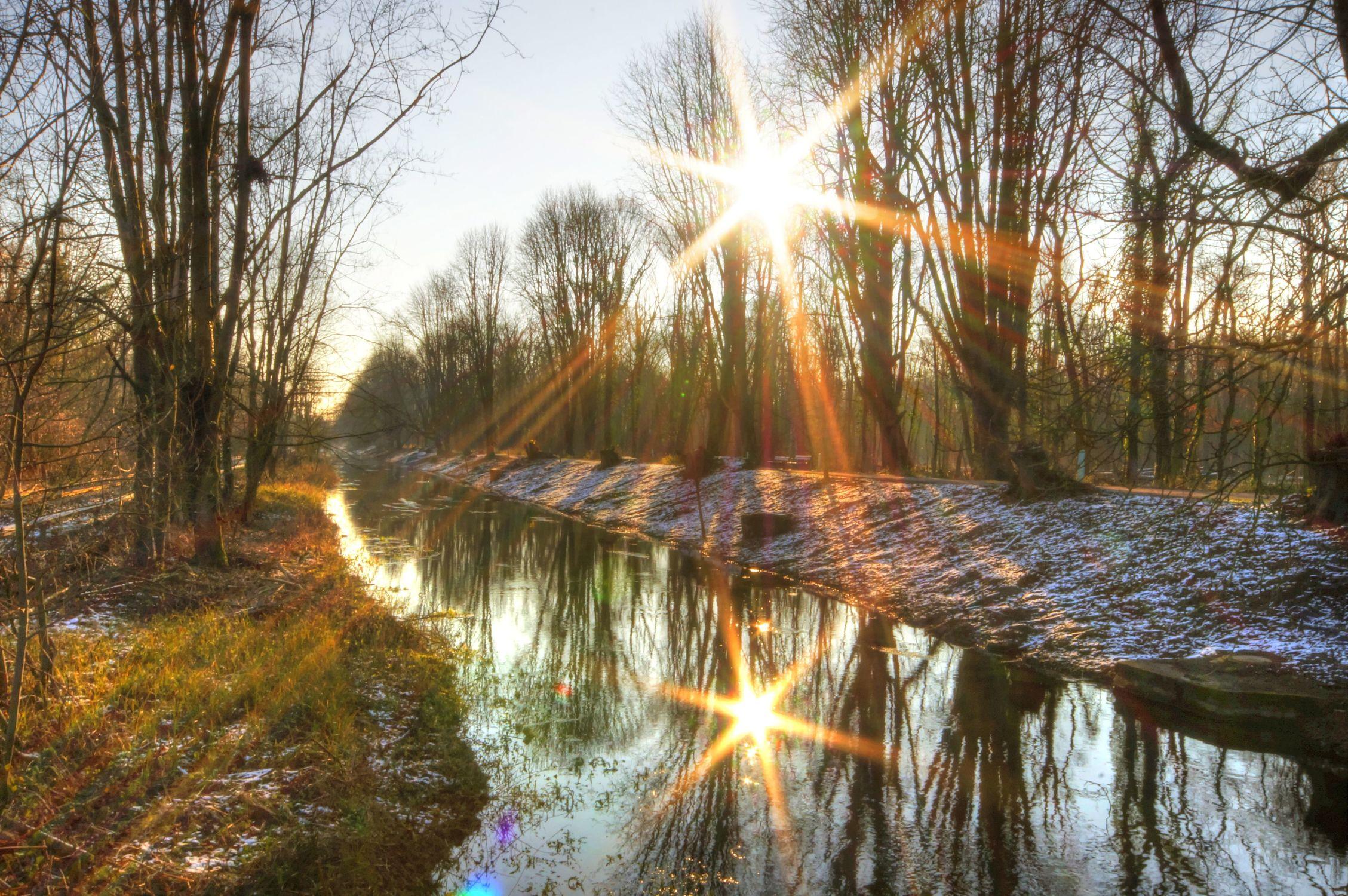 Bild mit Natur, Bäume, Winter, Wälder, Wald, Baum, Wäldchen, vereist, Sonnenstrahlen