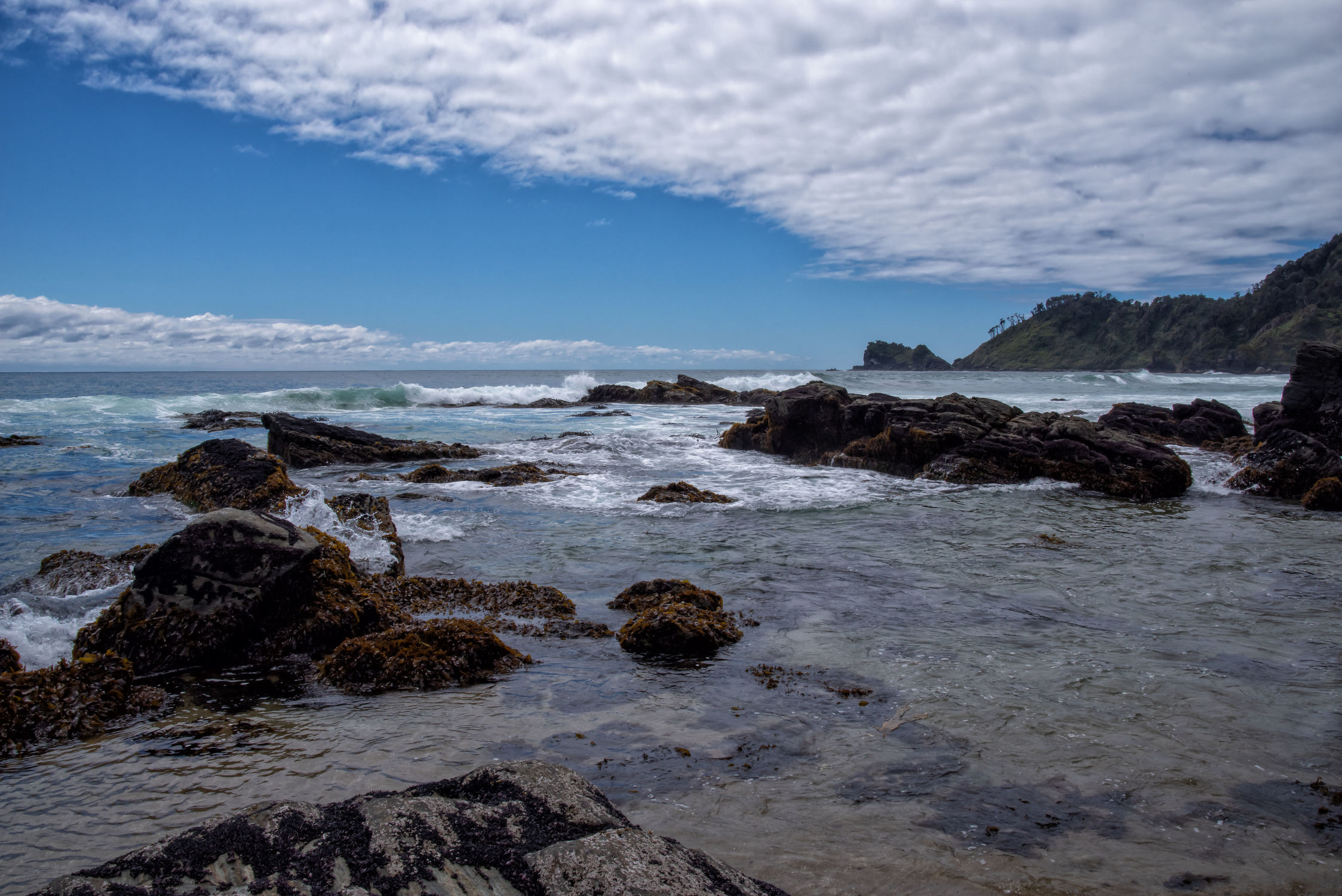 Bild mit Sky, clouds, Beach, Beach, Ocean, Nature, blue, Stones, water, Wind, summer, summer, Tide, plants, Chile, Pazifik, Los Lagos Region, South America, holidays, pacific, flow, waves, surf, coast, shore, eukalyptue, rock, southern Chile, bay, flood, hor
