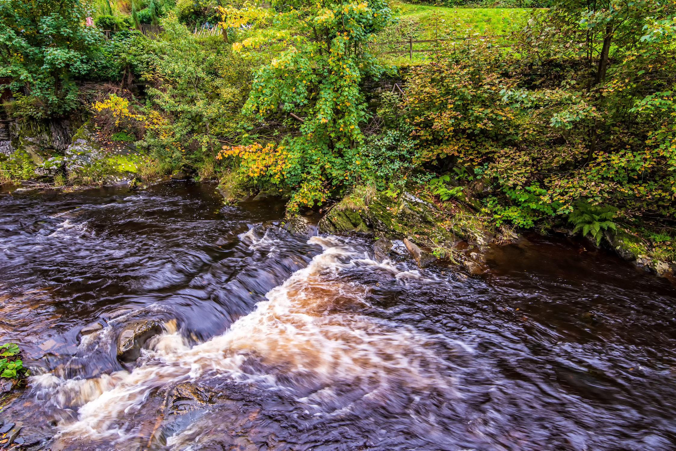 Bild mit Natur, Wasser, Landschaften, Gewässer, Entspannung, Natur und Landschaft, Erholung, Fluss, grüne Lunge, Eifel, Saarburg, Landkreis Trier