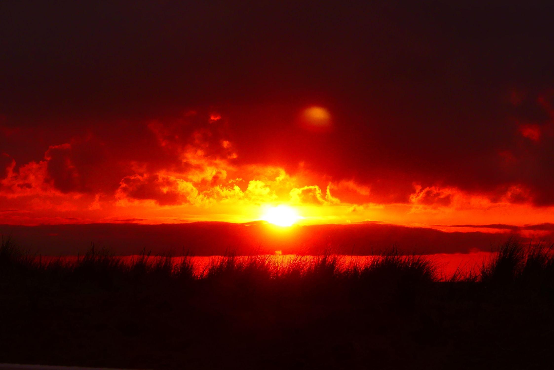 Bild mit Sonnenuntergang, Abendrot, Meer, Dünengras