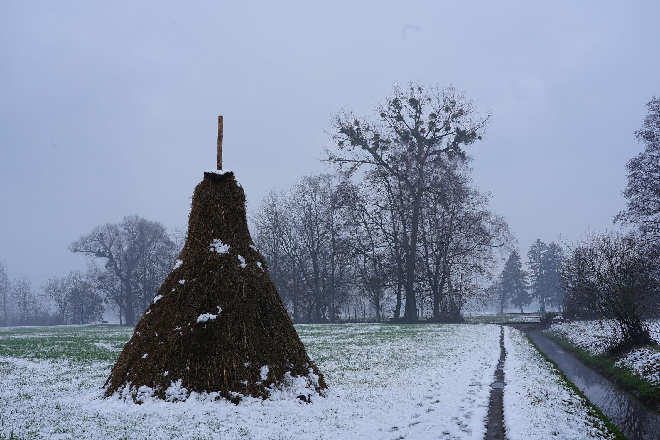 Bild mit Nebel, winterlandschaft, Winterimpressionen, Winterstroh