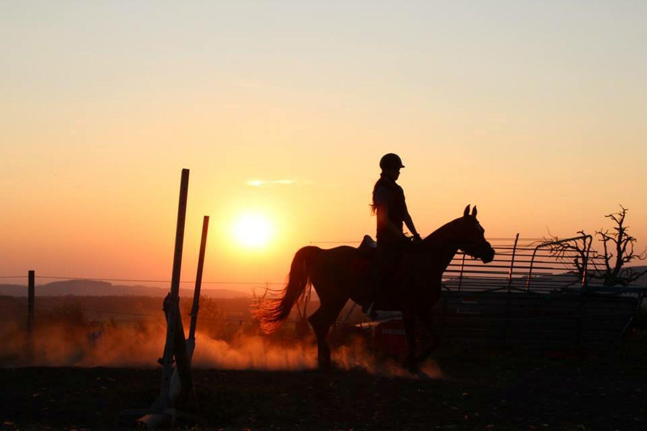 Bild mit Himmel, Sonnenaufgang, Sonne, Landschaft, Pferd, Sonnenuntergänge, Sonnenauf/untergang, Reiterin, Freiheit, & Untergänge, und Untergänge