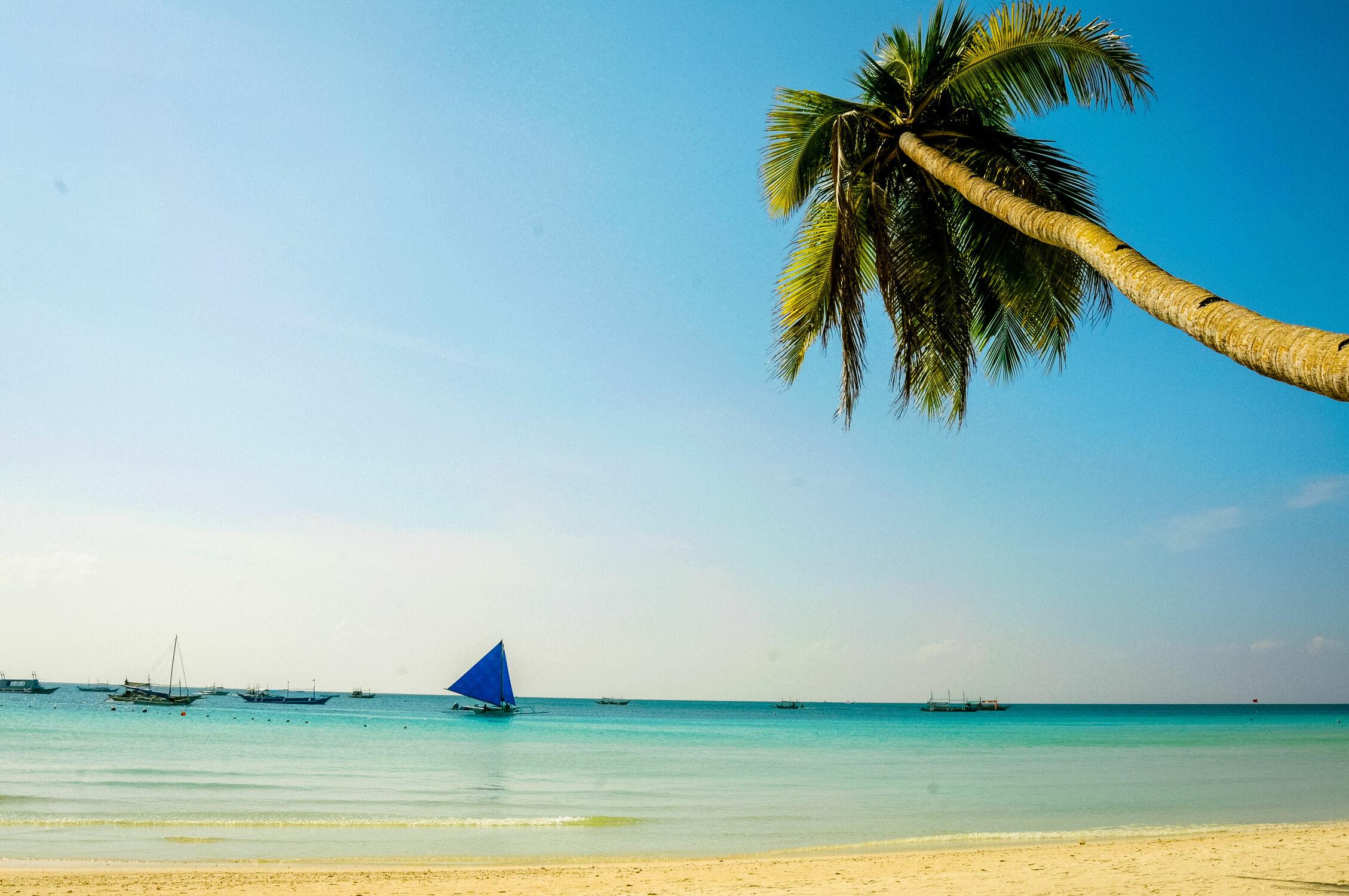 Bild mit Strand, Meerblick, Karibik, Philippinen