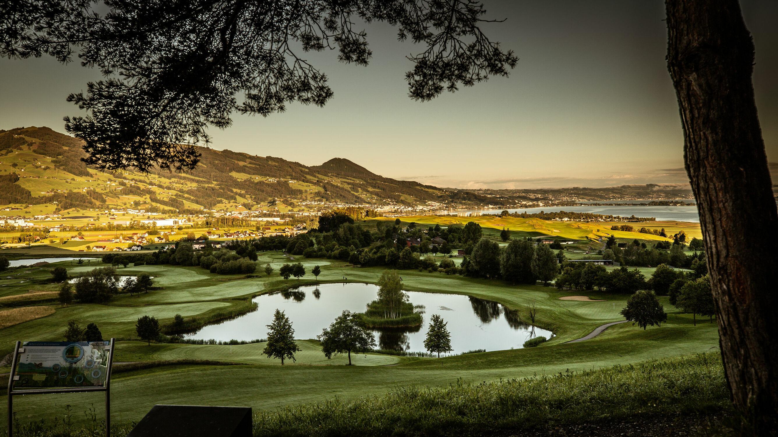 Bild mit Landschaftspanorama, Teich, Morgenstimmung, Linthebene