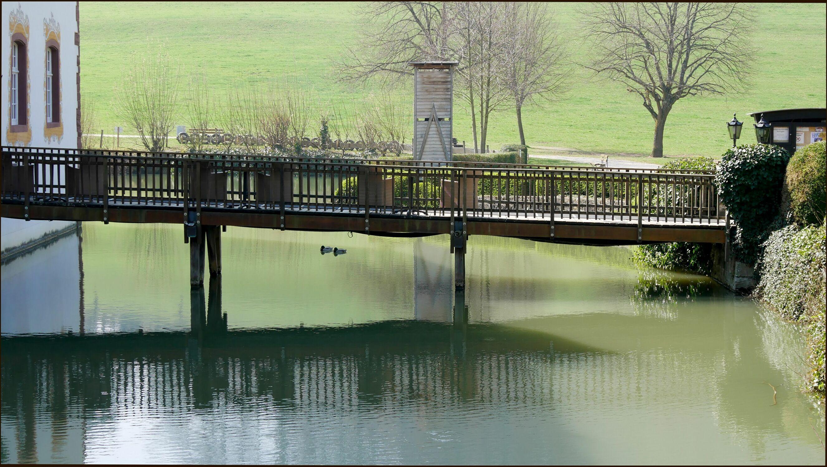 Bild mit Natur, Bäume, Frühling, Holzstruktur, See, Feld, Spiegelungen, Holzbrücke