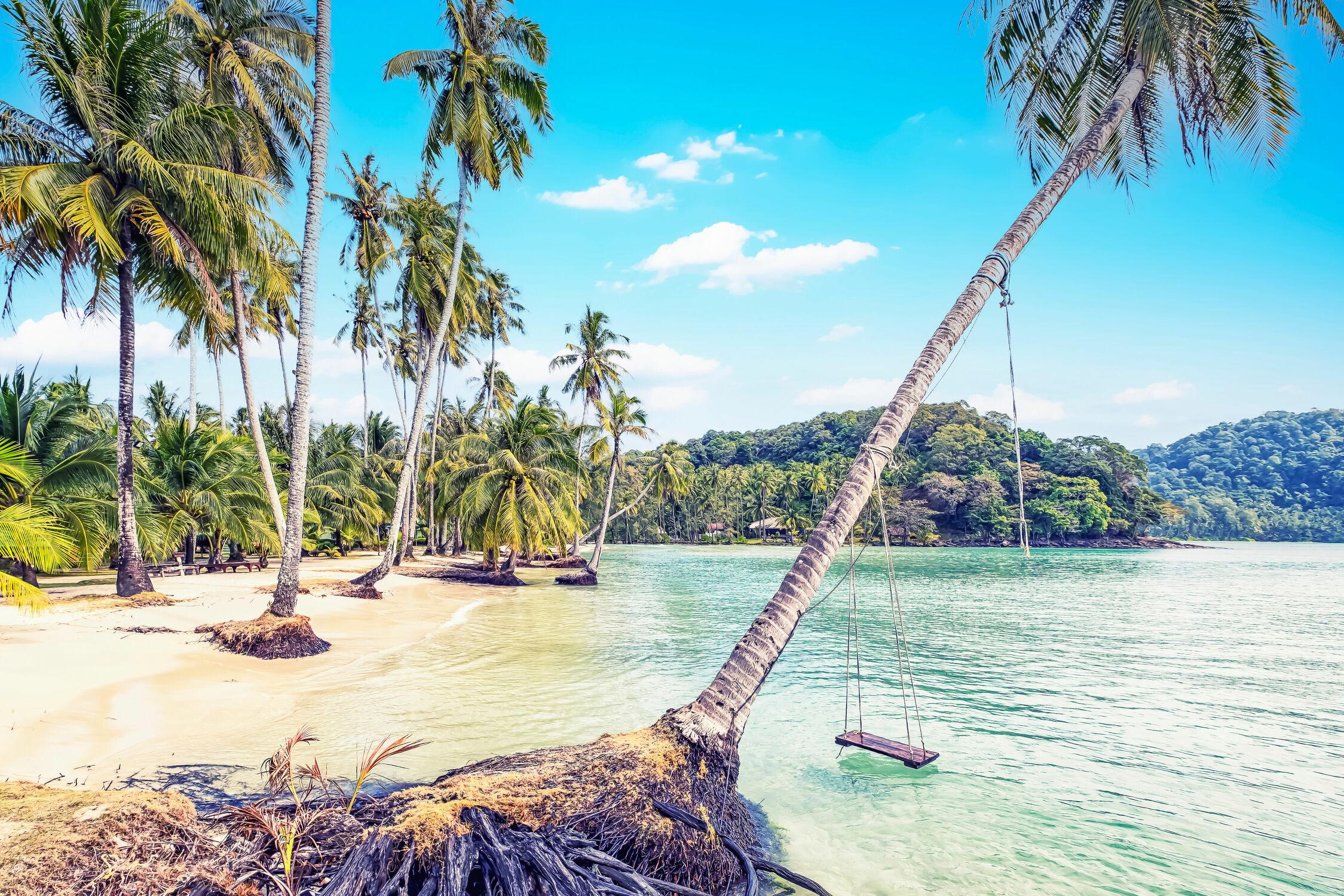 Bild mit Strände, Palmen, Inseln, Meerblick, Insel, asien, südostasien, Bucht, Thailand, Koh Kood