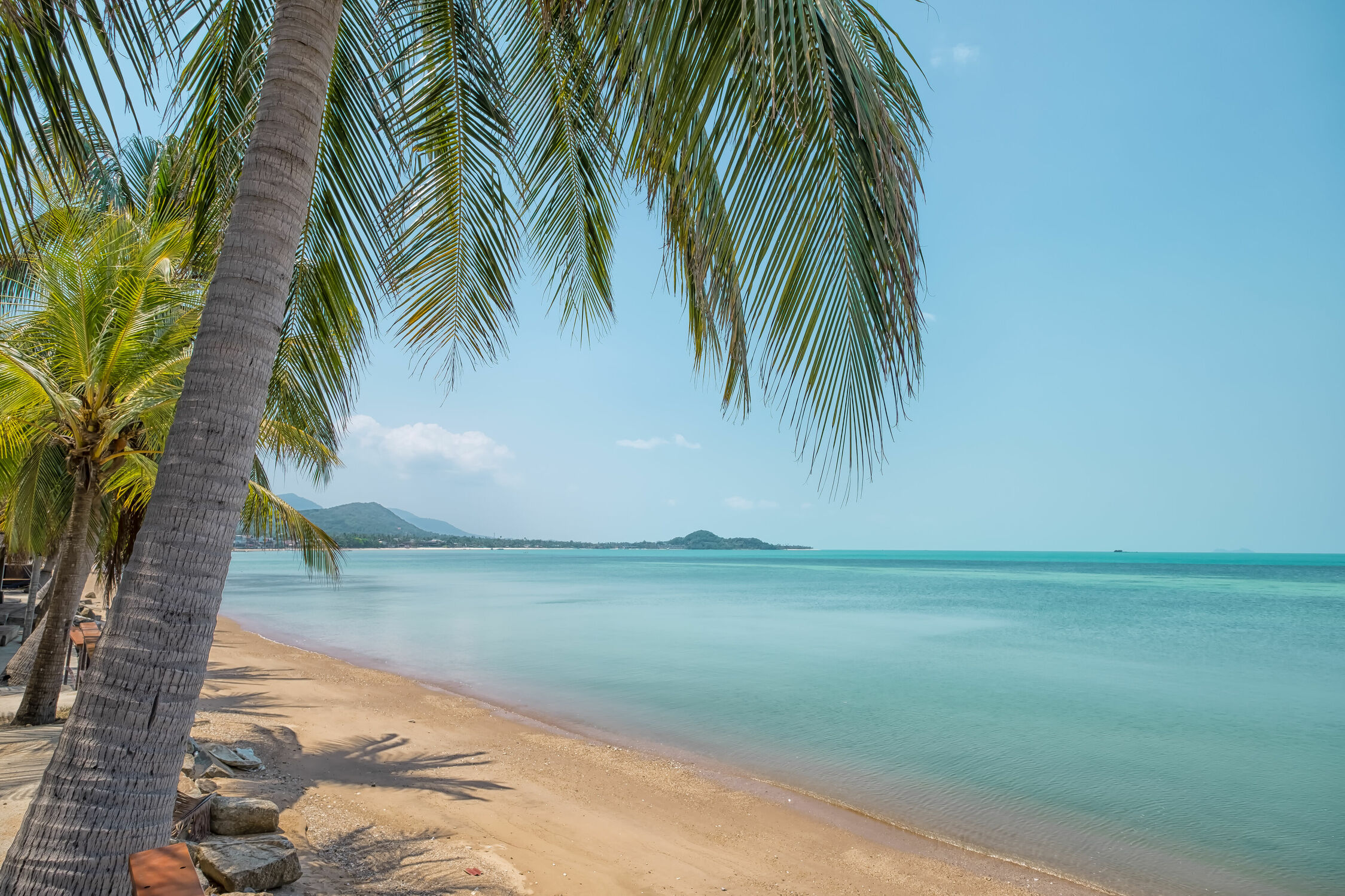Bild mit Strände, Palmen, Inseln, Meerblick, südostasien, Thailand, Koh Samui