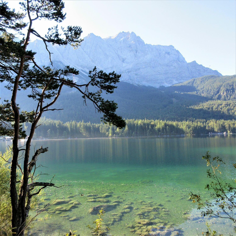 Bild mit Wälder, Märchenwald, Bergsee, Gebirge, waldwege