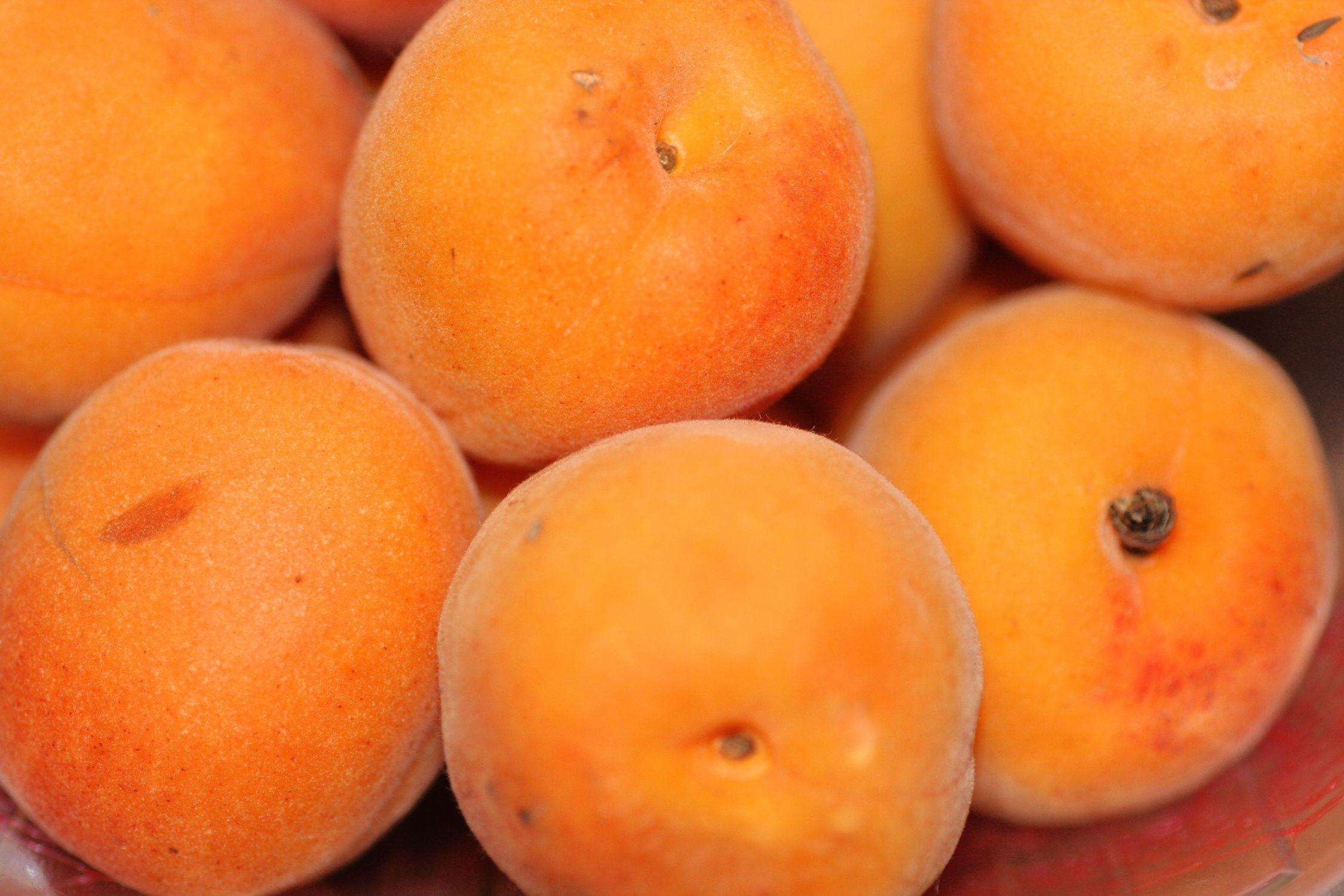Bild mit Orange, Gelb, Gegenstände, Natur, Pflanzen, Früchte, Lebensmittel, Essen, Pfirsiche, Frucht, Aprikose, Aprikosen, Marille, L Obst, klein geratenen Pfirsich, Malete, Armeniaca, Reife Aprikosen