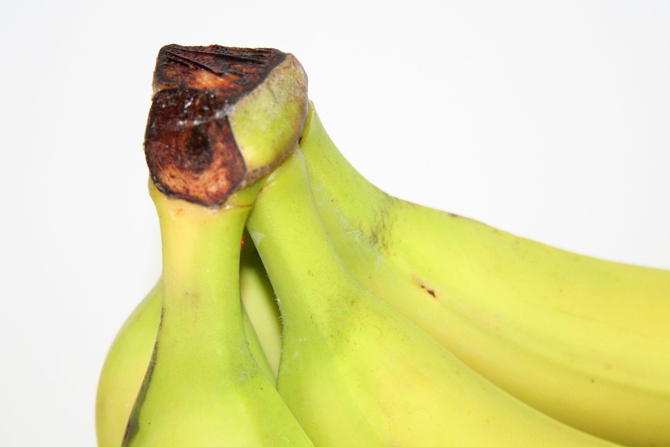 Bild mit Früchte, Bananen, Frucht, Banane, Obst, Küchenbild, banana