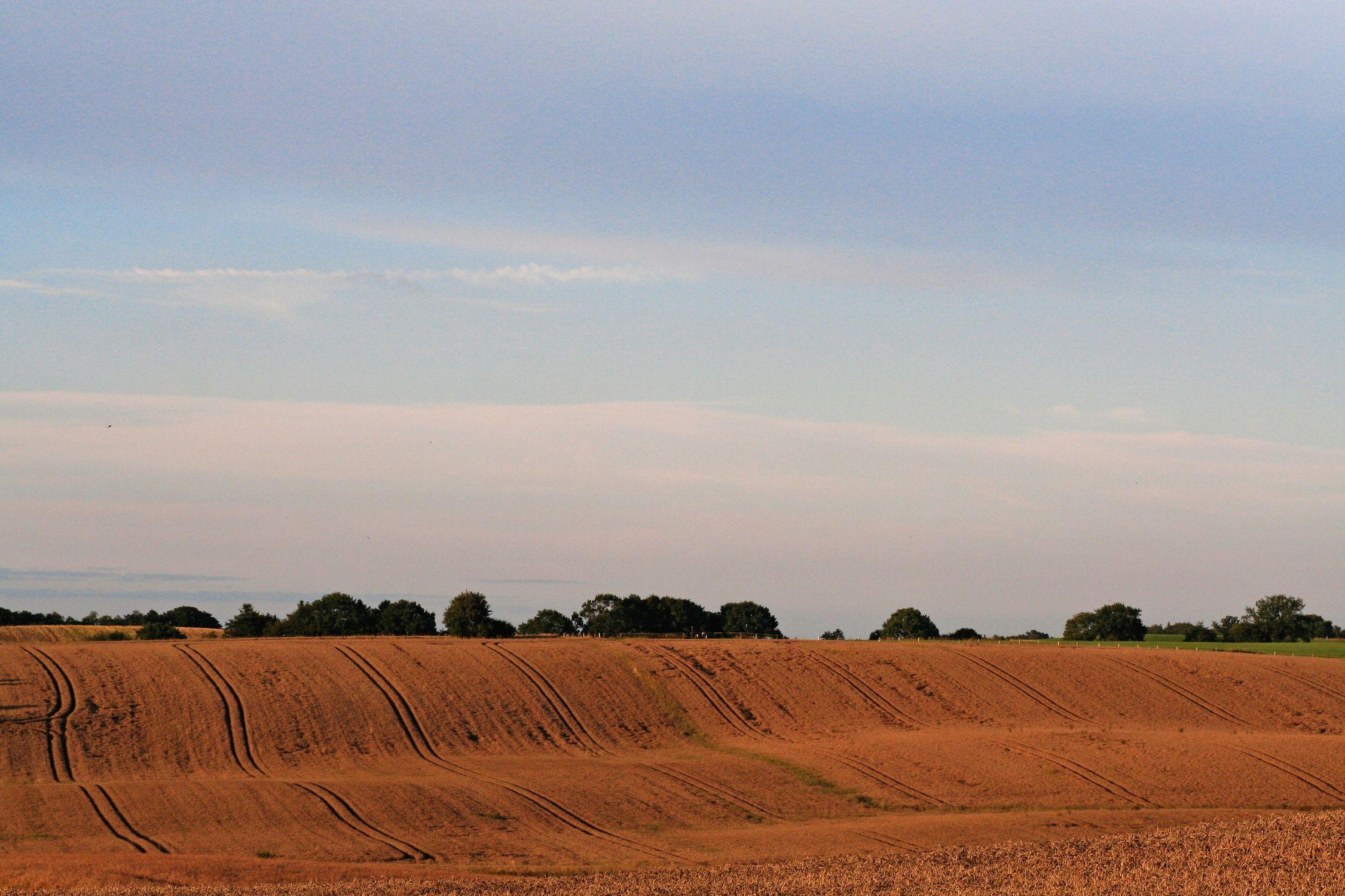 Bild mit Natur, Pflanzen, Gräser, Landschaften, Himmel, Bäume, Weiden und Wiesen, Wolken, Horizont, Siedlungen, Architektur, Bauwerke, Gebäude, Bauernhöfe, Ländliche Gebiete, Buschland, landwirtschaft