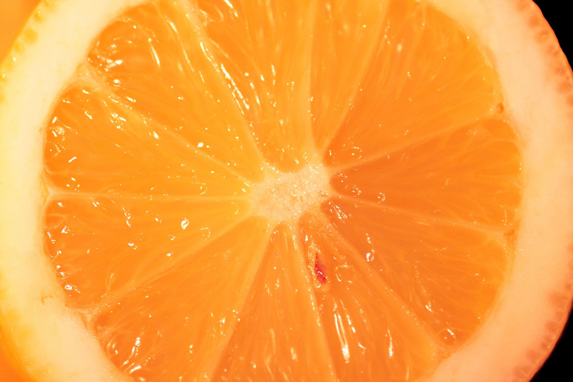 Bild mit Früchte, Lebensmittel, Essen, Zitrusfrüchte, Orangen, Grapefruits, Mandarinen
