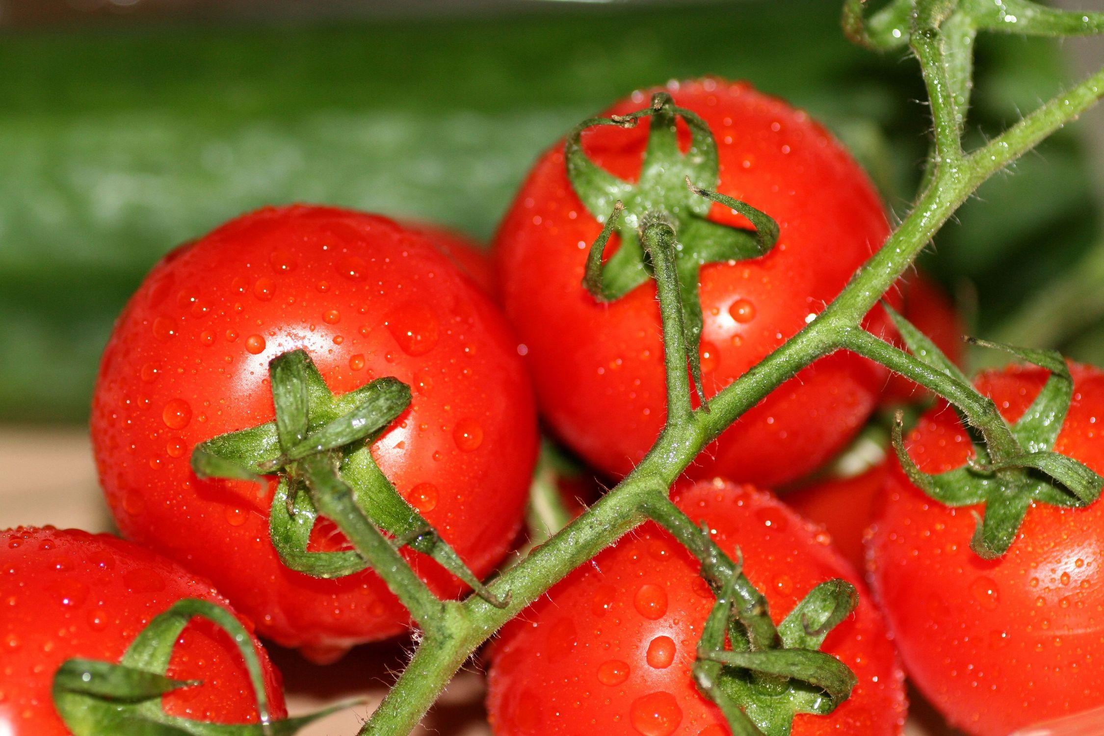 Bild mit Tomate, Tomaten, Gemüse, Küchenbild