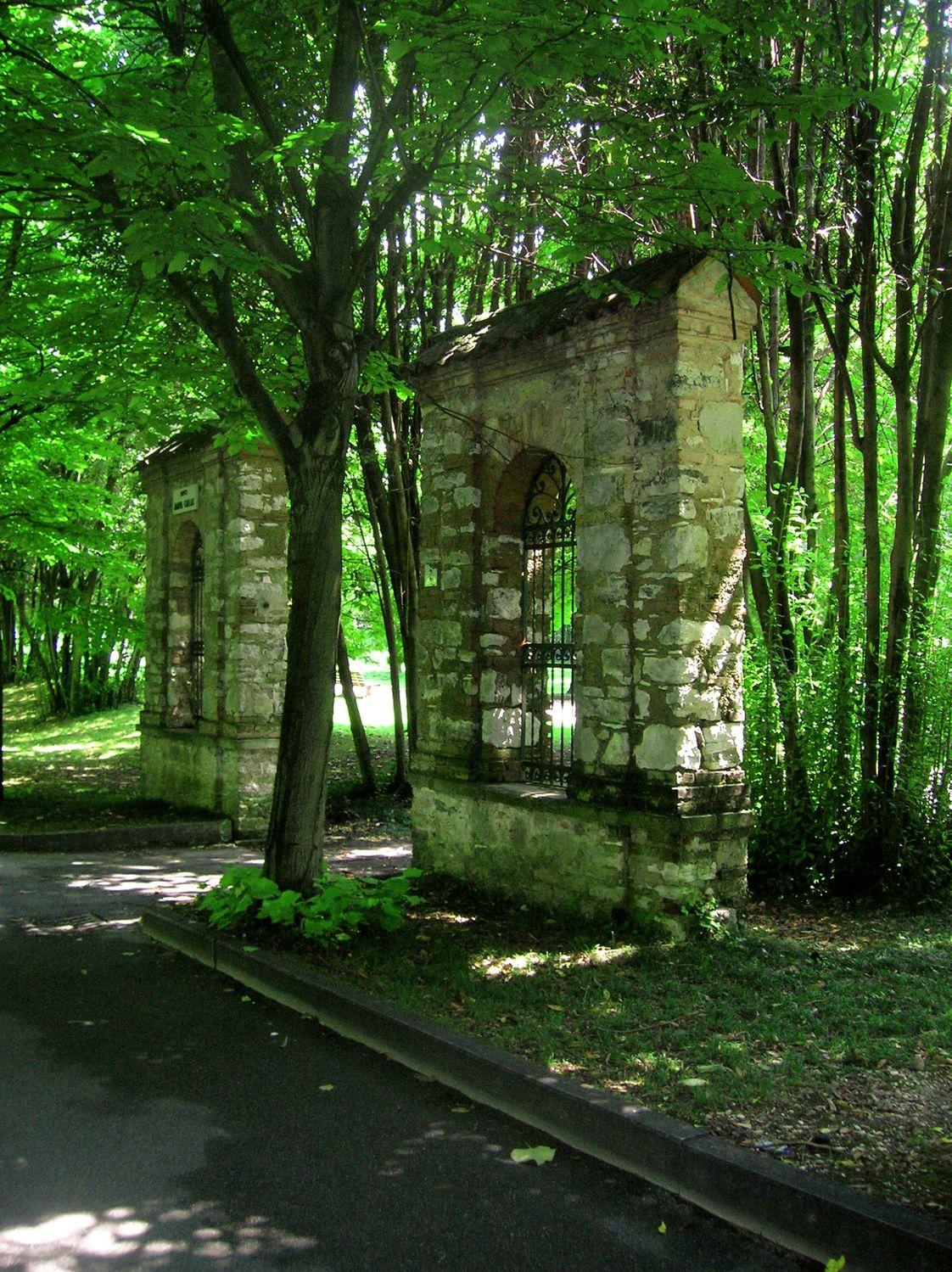 Bild mit Natur, Bäume, Wälder, Gebäudeteile, Wald, alte Mauerwand, alte Ziegelwand