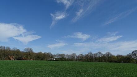Bild mit Himmel, Bäume, Laubbäume, Panorama, Landschaft, Wolken am Himmel, Ackerland