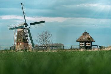 Bild mit Sonnenuntergang, Sonnenaufgang, Vögel, Landschaft, Wiese, Nordsee, See, Ostfriesland, Mühle