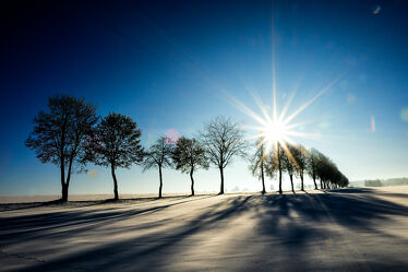 Bild mit Bäume, Schnee, Sonne, winterlandschaft, Schneelandschaften, Landschaften im Winter