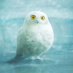Bild mit Winter,Schnee,Eis,Eulen,weiss,Kinderzimmer,Eule,Schneeeule,Kunst fürs Kinderzimmer,niedlich,hellblau